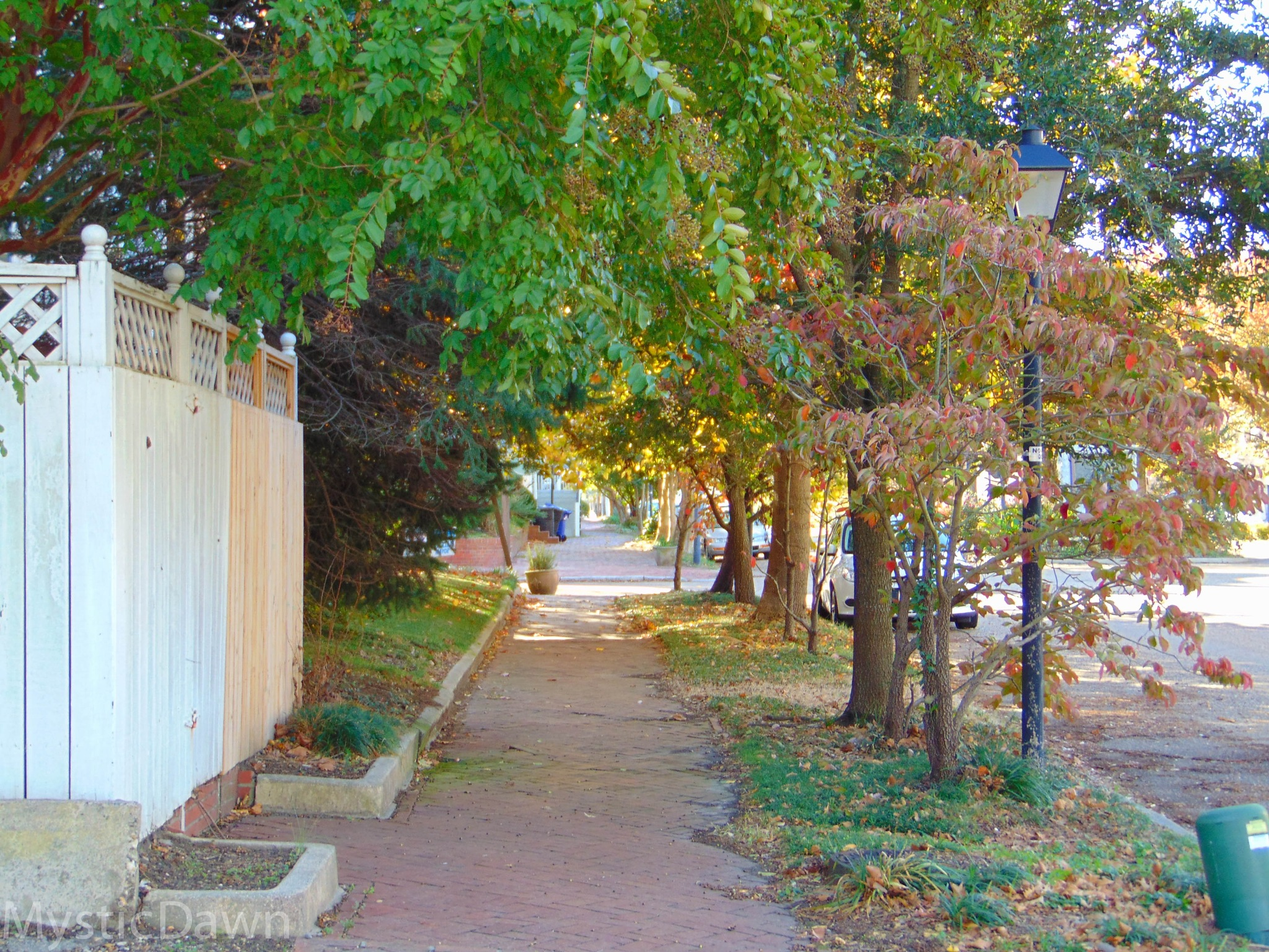 Sidewalk in the fall time by dawnjacksondavenport