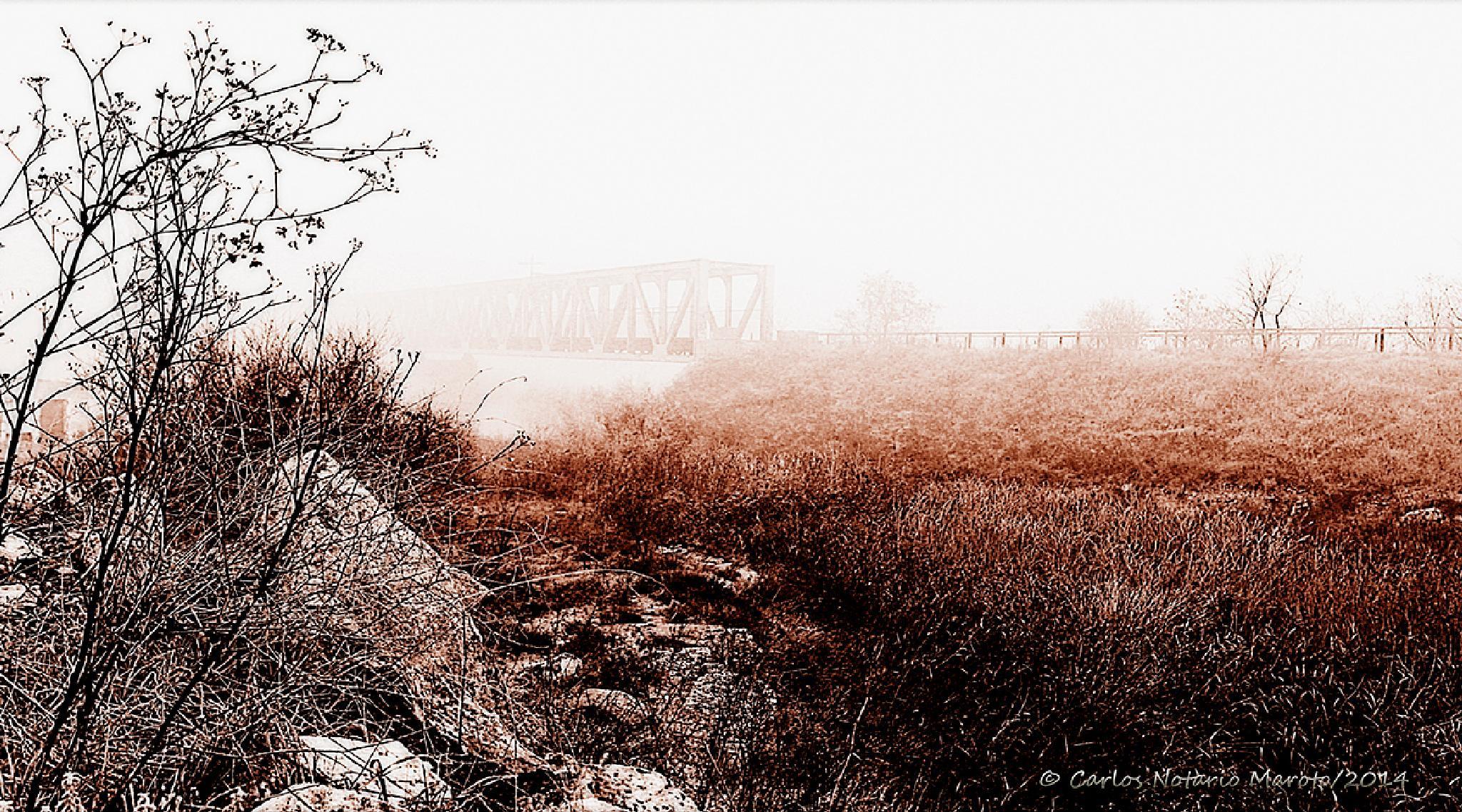 El puente y la niebla-1 by Carlos Notario Maroto