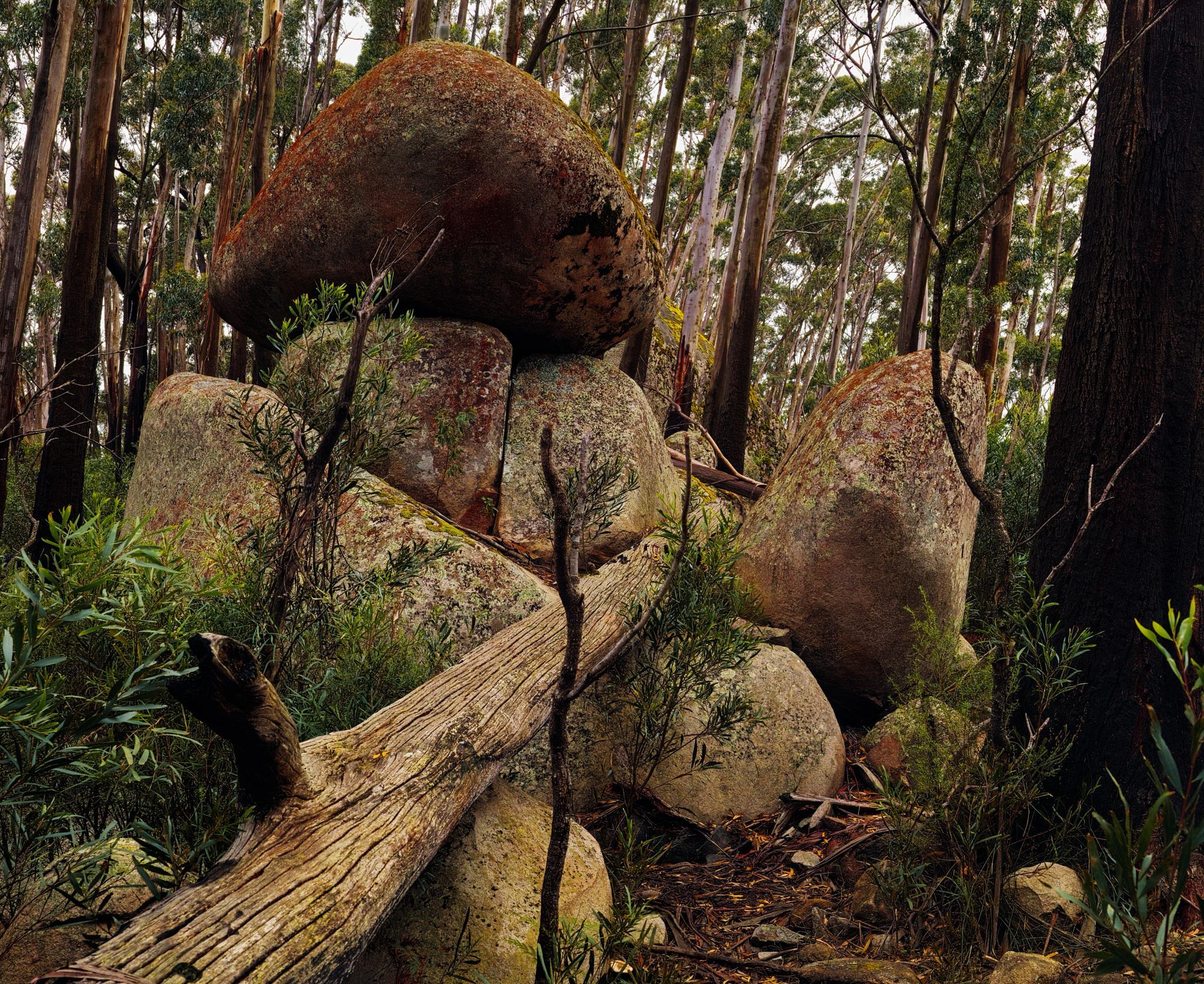 Mt Dromedary Tors by adrian.bradley.184