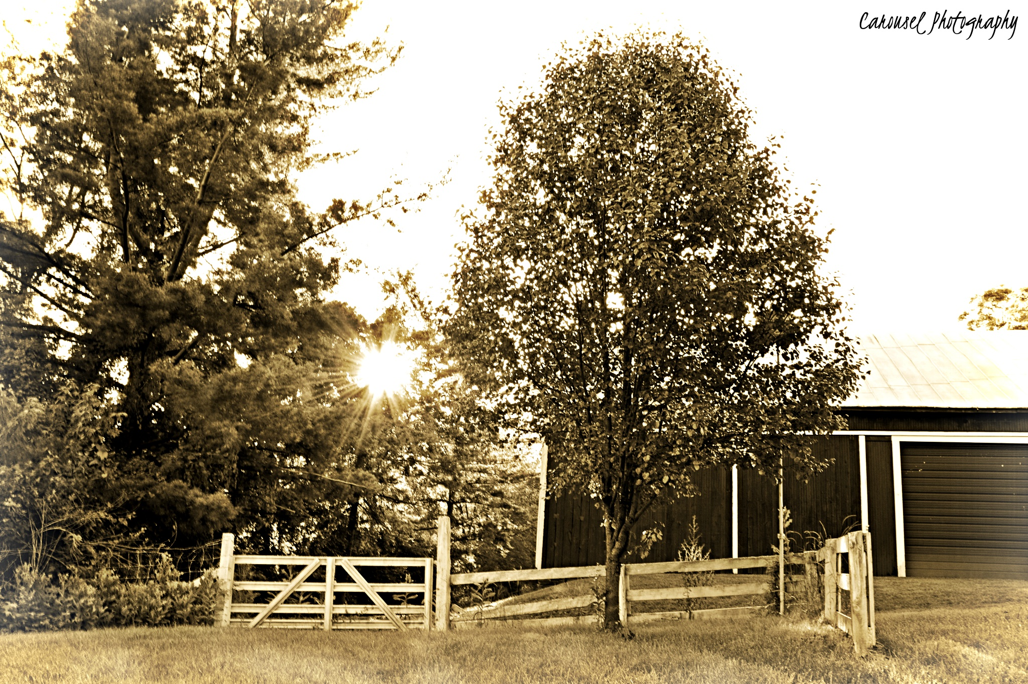 Country Corner by yepimabeliever