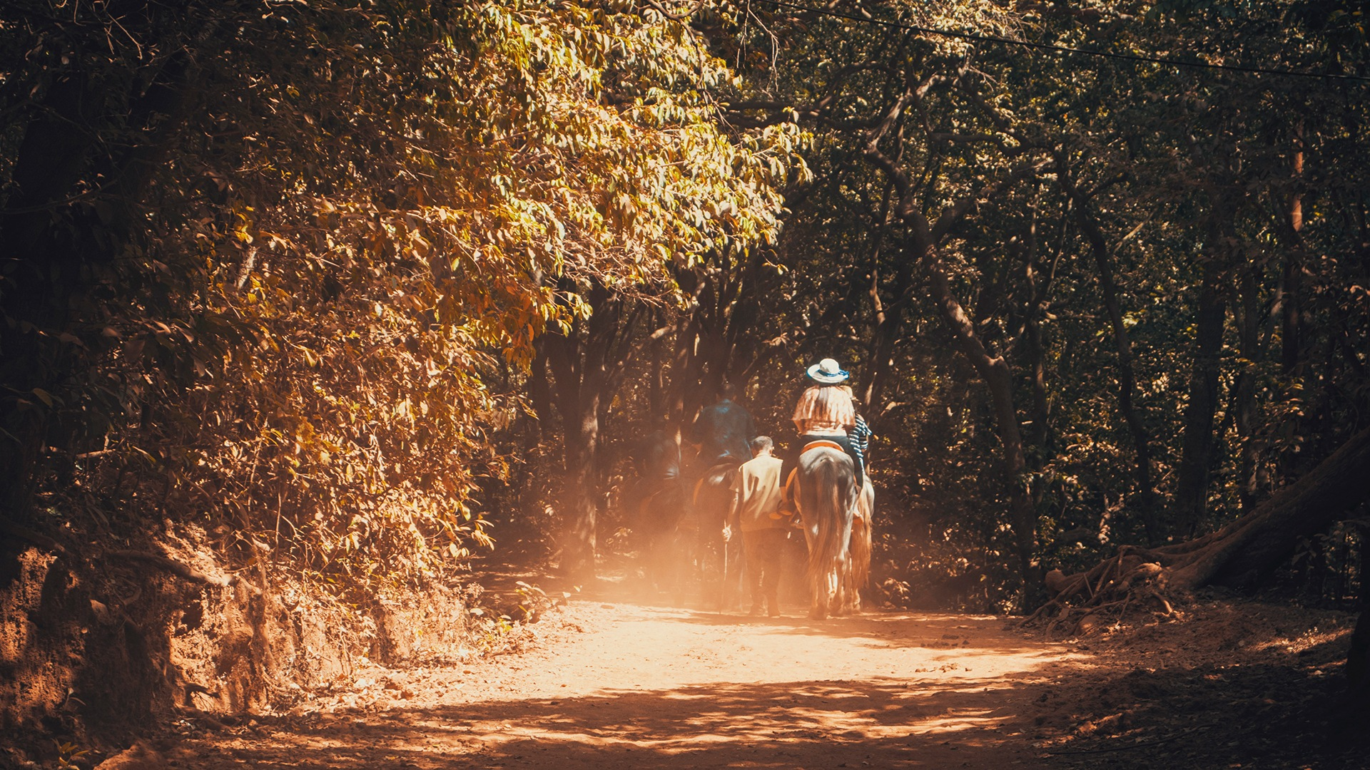 a road that leads adventure  by Akash Chakraborty