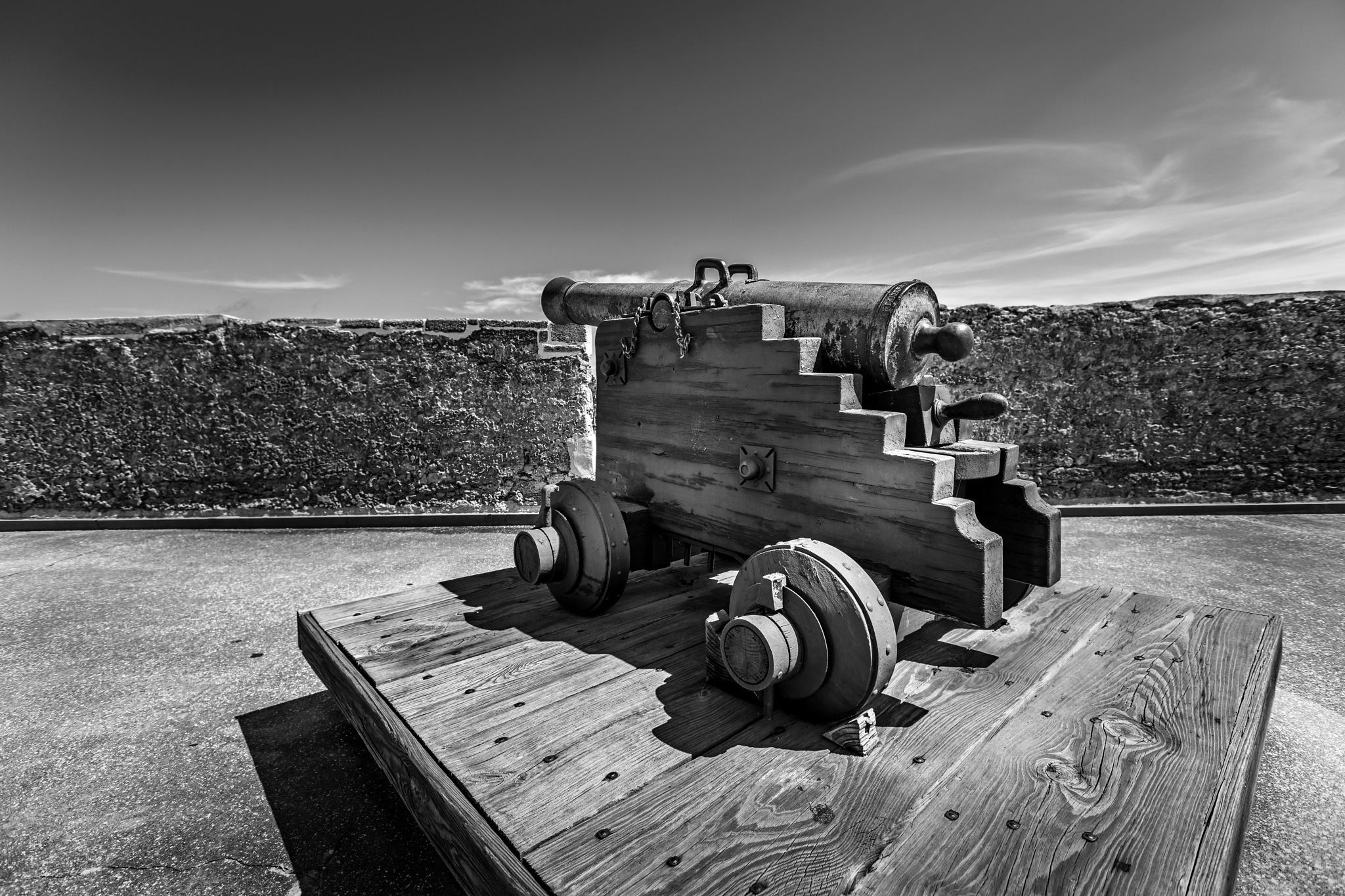 Cannon by Bryan L. Williams