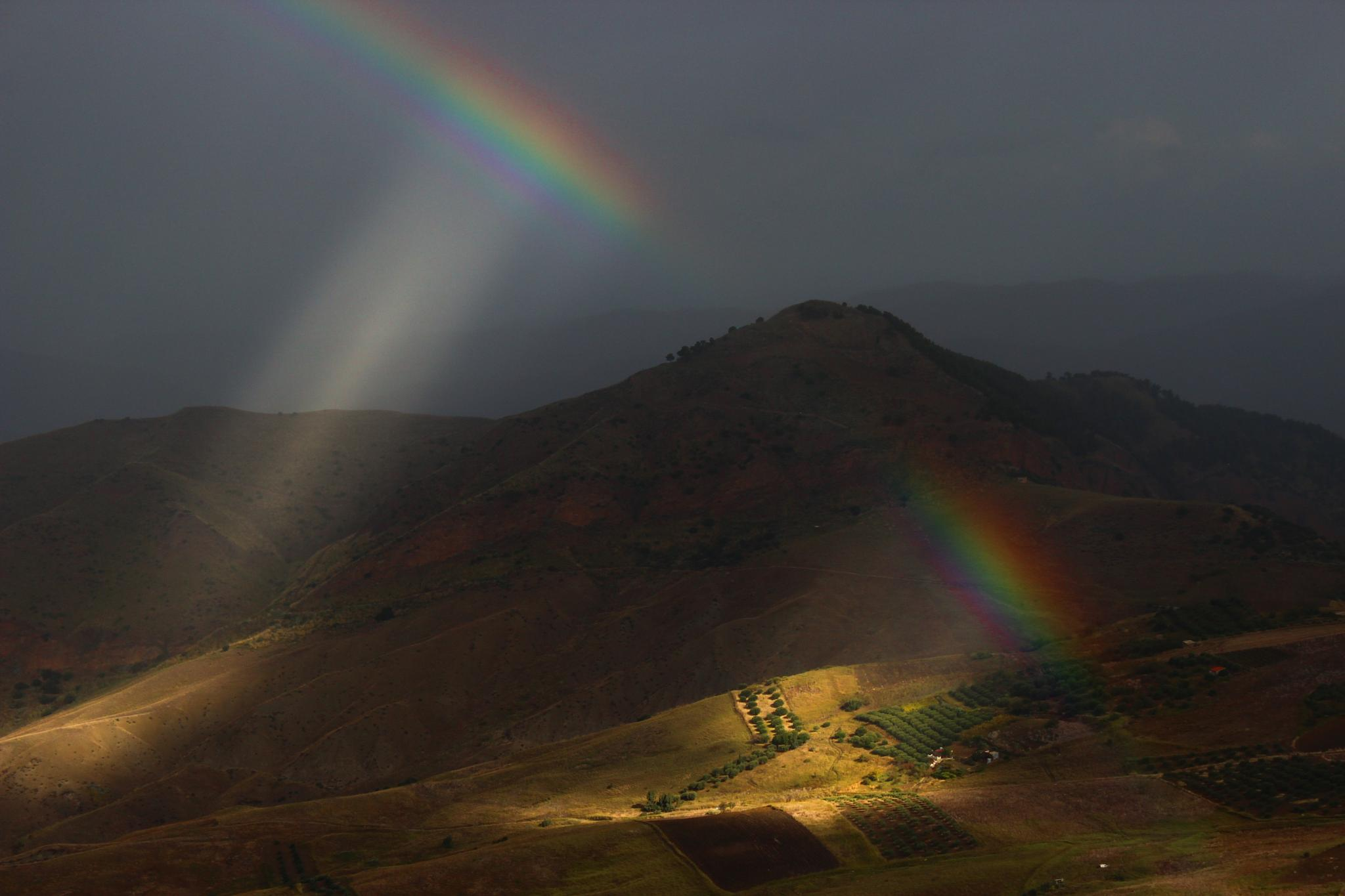 pieces of rainbow by Tommaso