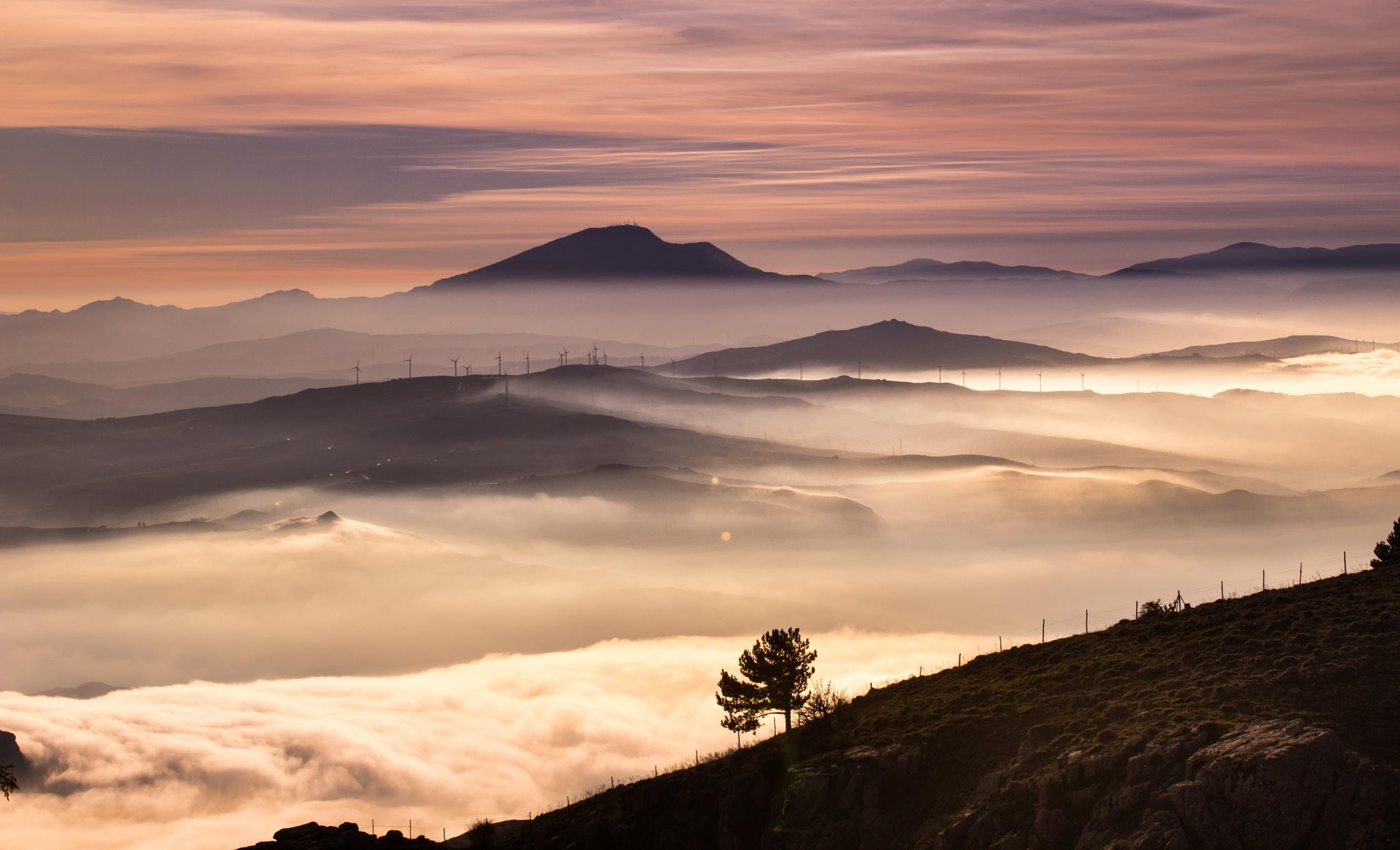 vista paradiso by Tommaso