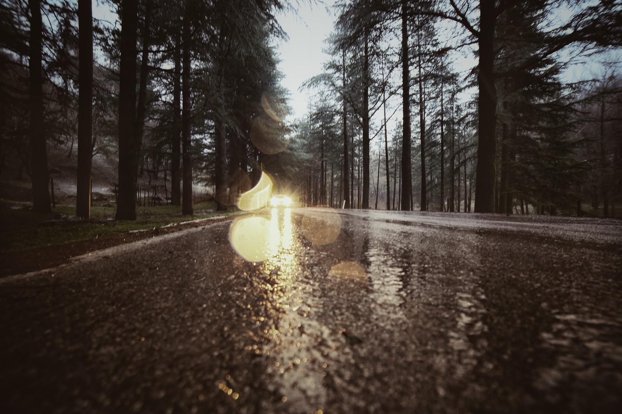 adoro la pioggia  by Tommaso