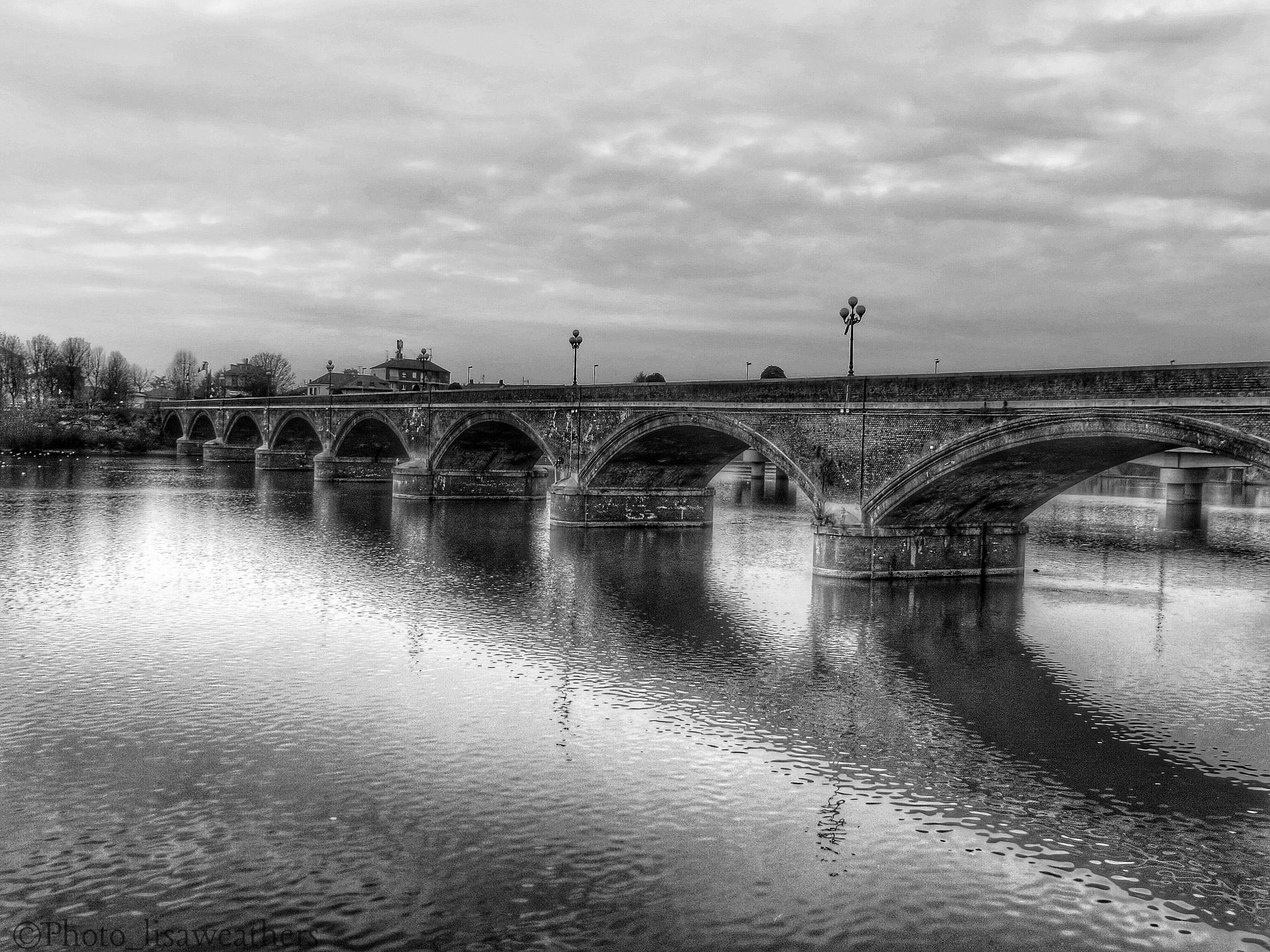 The bridge by lisa.weathers