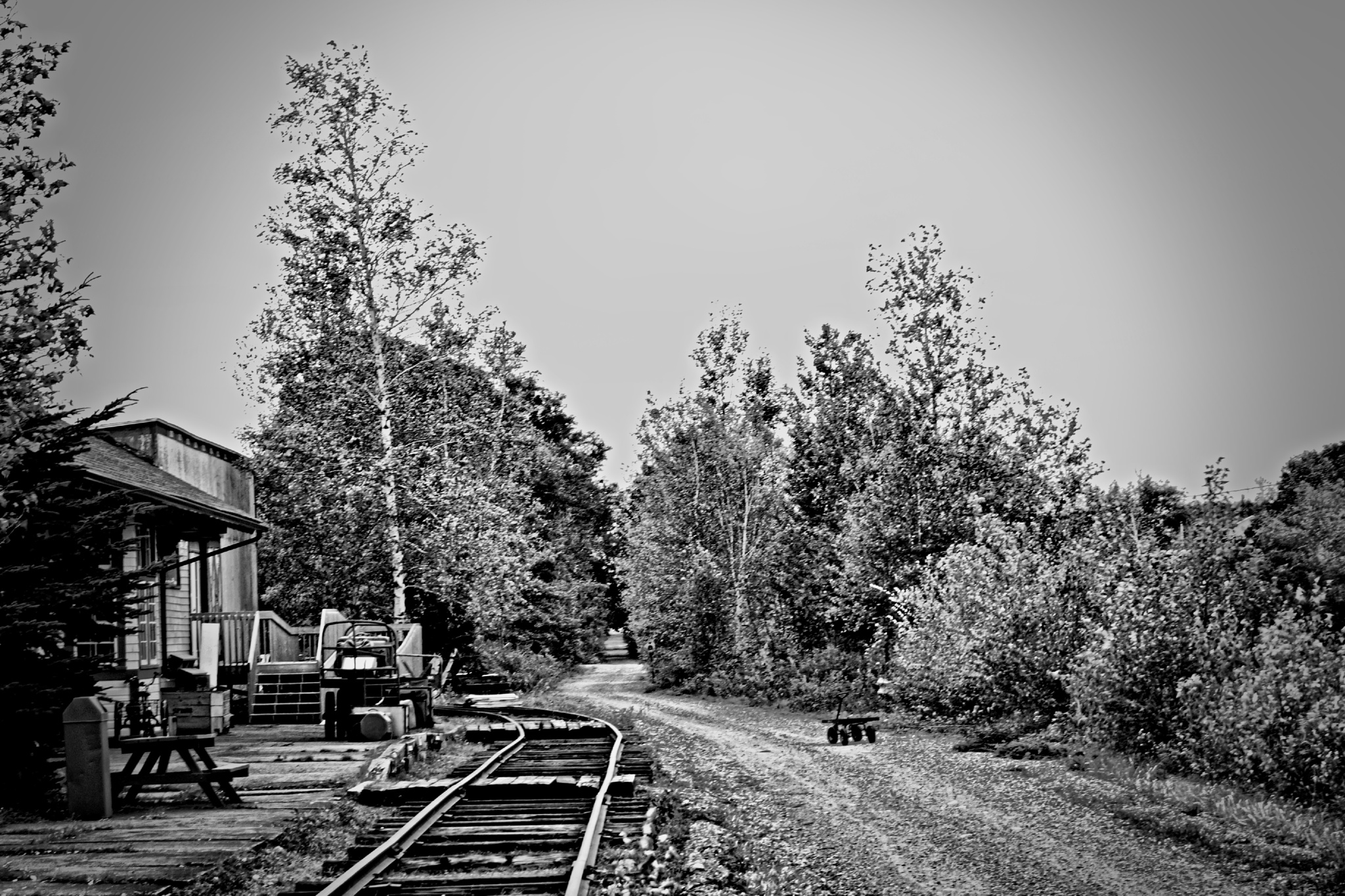 Old Middleton Railway  by Brian Hannah