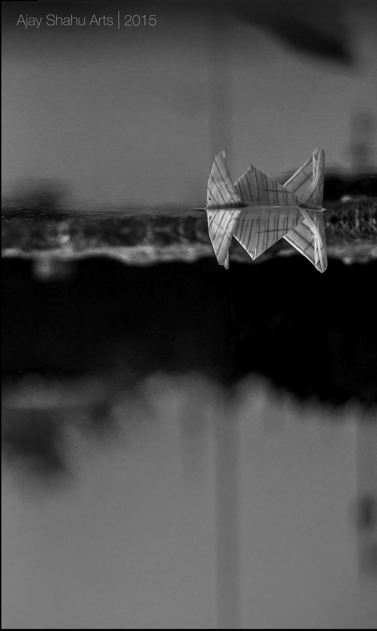 Upside down by Ajay Shahu