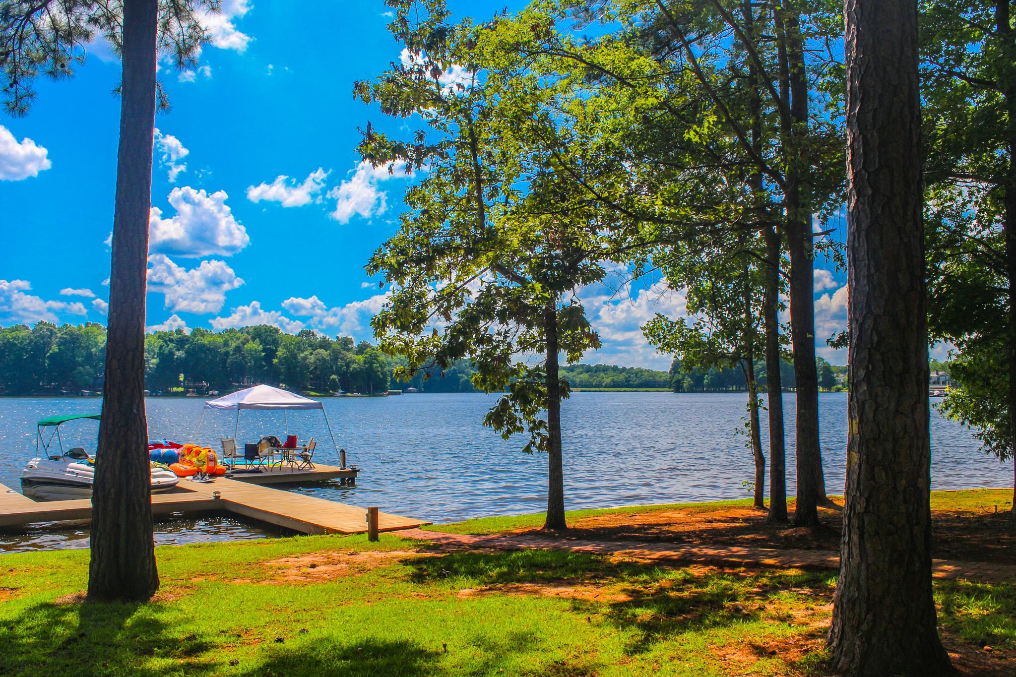 Lake Life by Scott F. Brooks