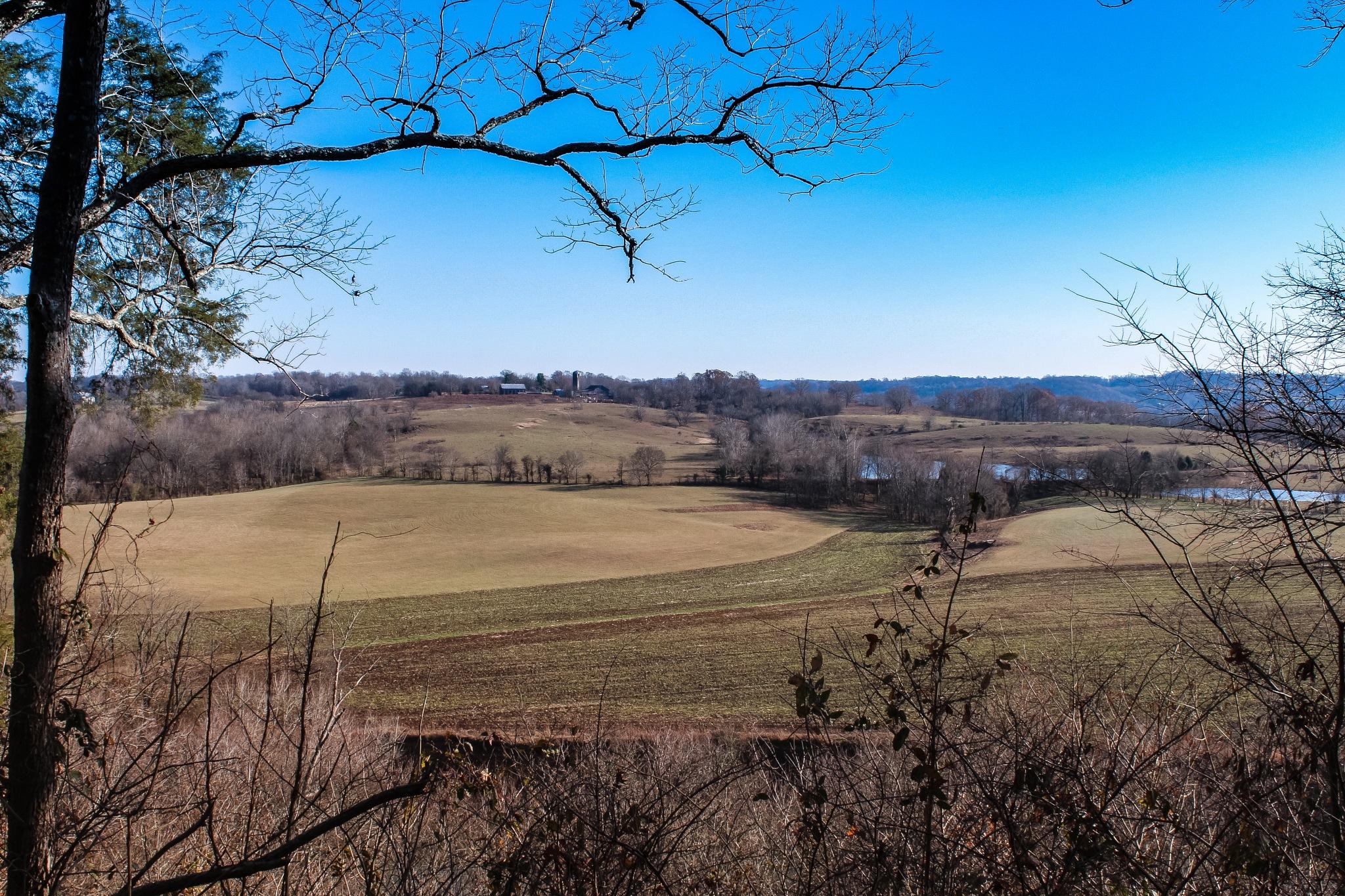 Fall on the Natchez Trace by Scott F. Brooks