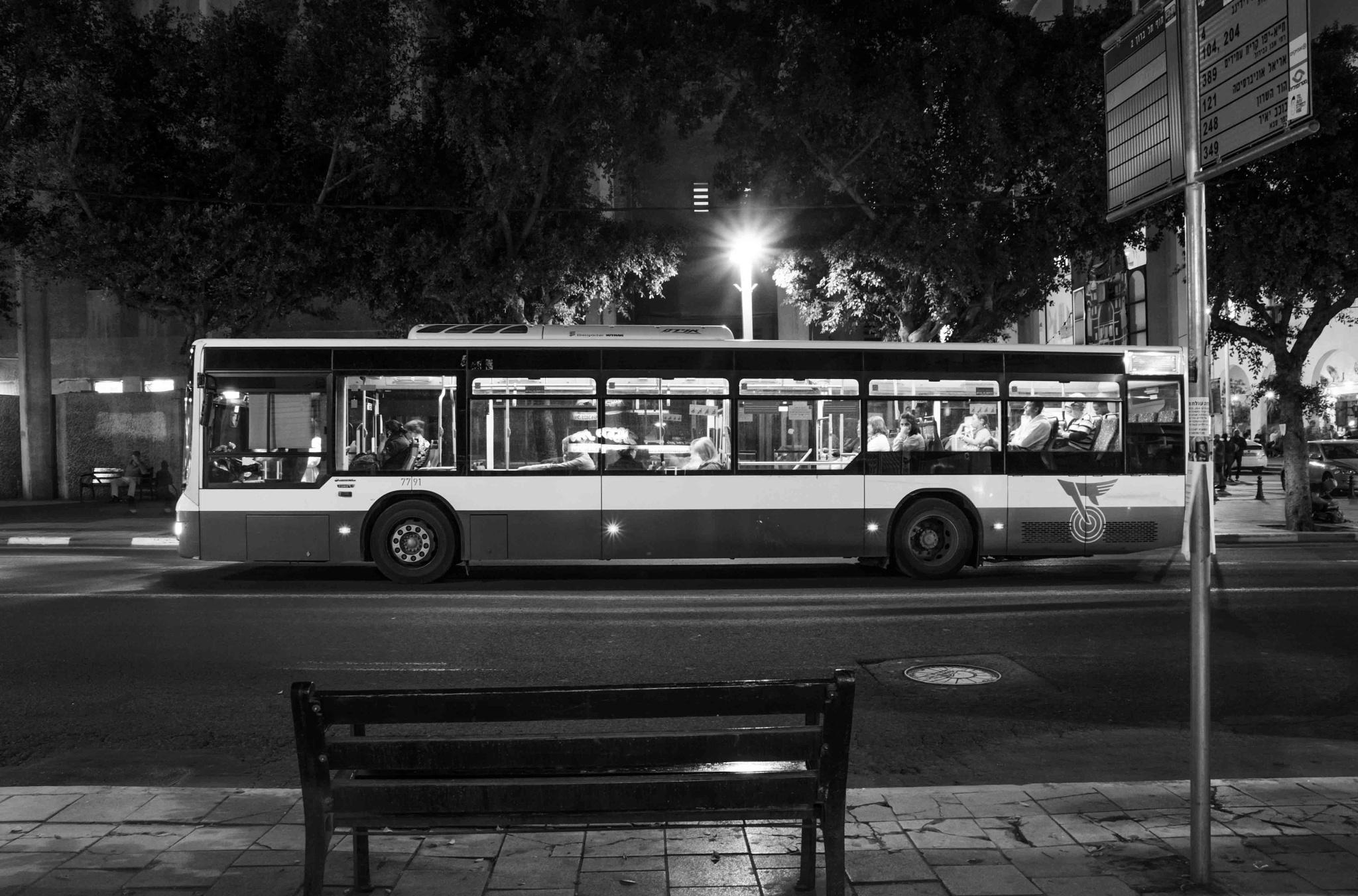 Night line by oriel beery