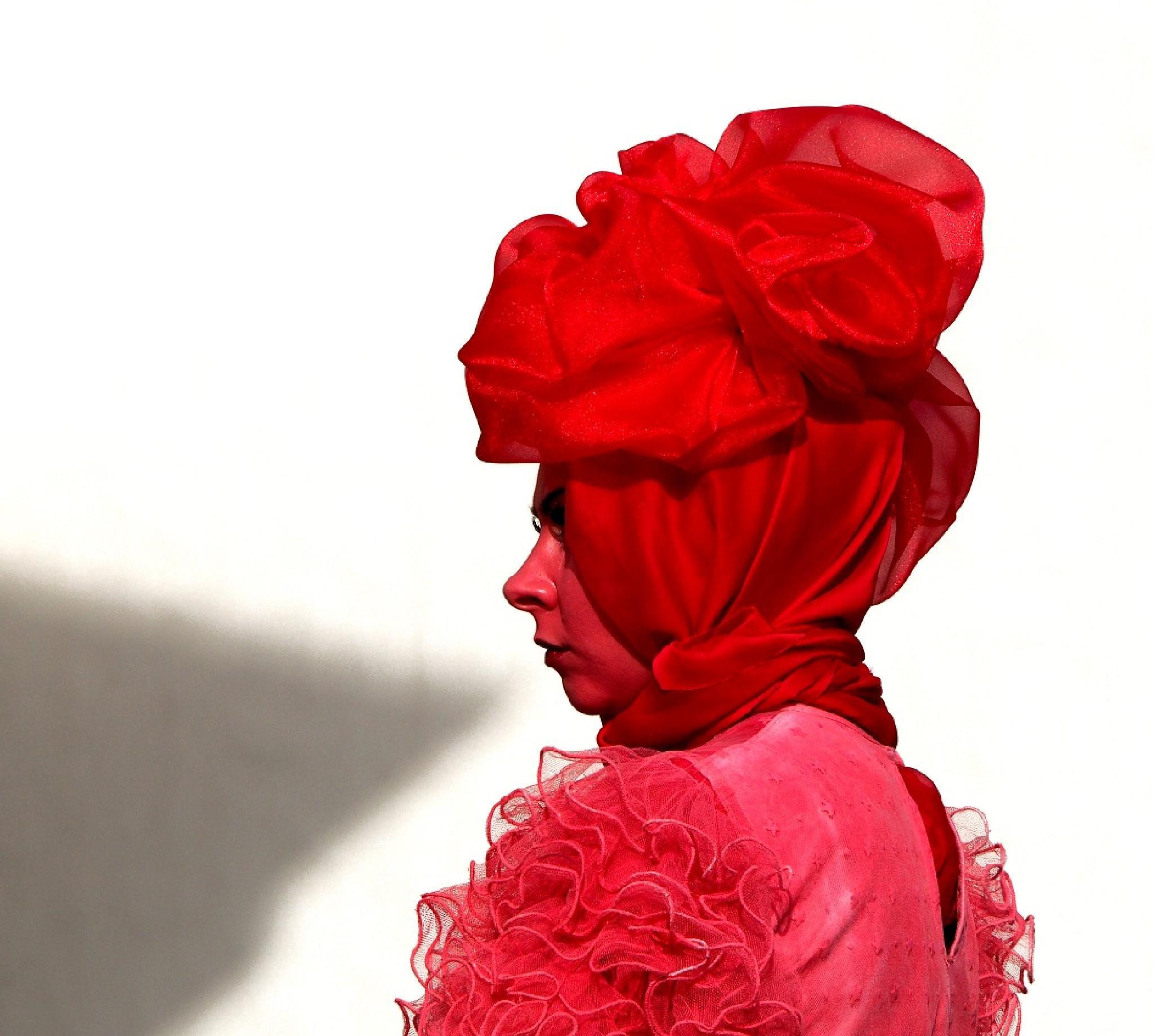-lady in red- by rytis.vilnietis