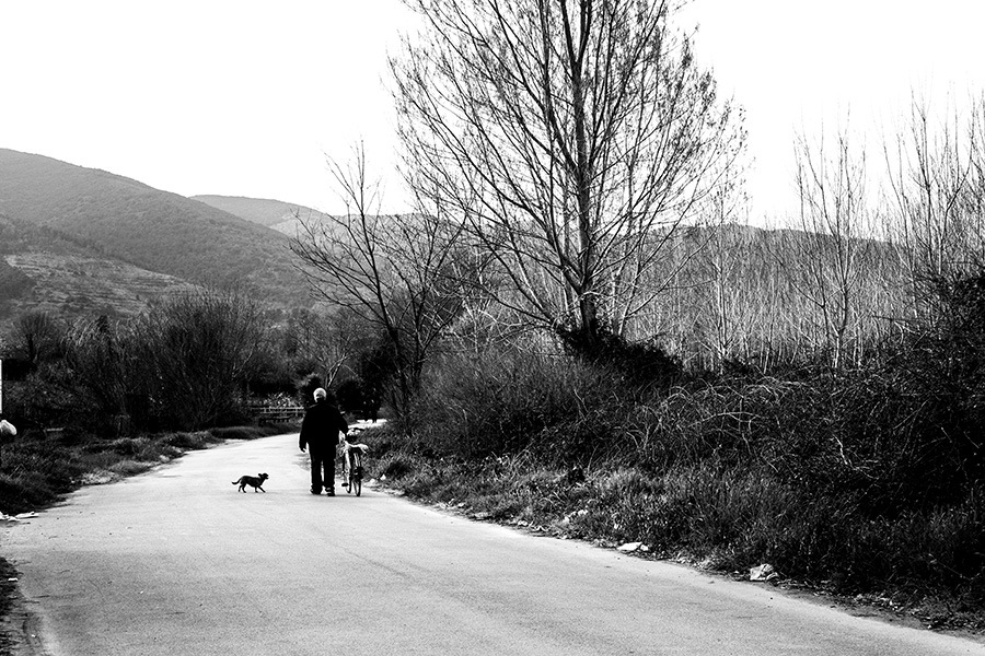 On the road by Salvatore Bertolino
