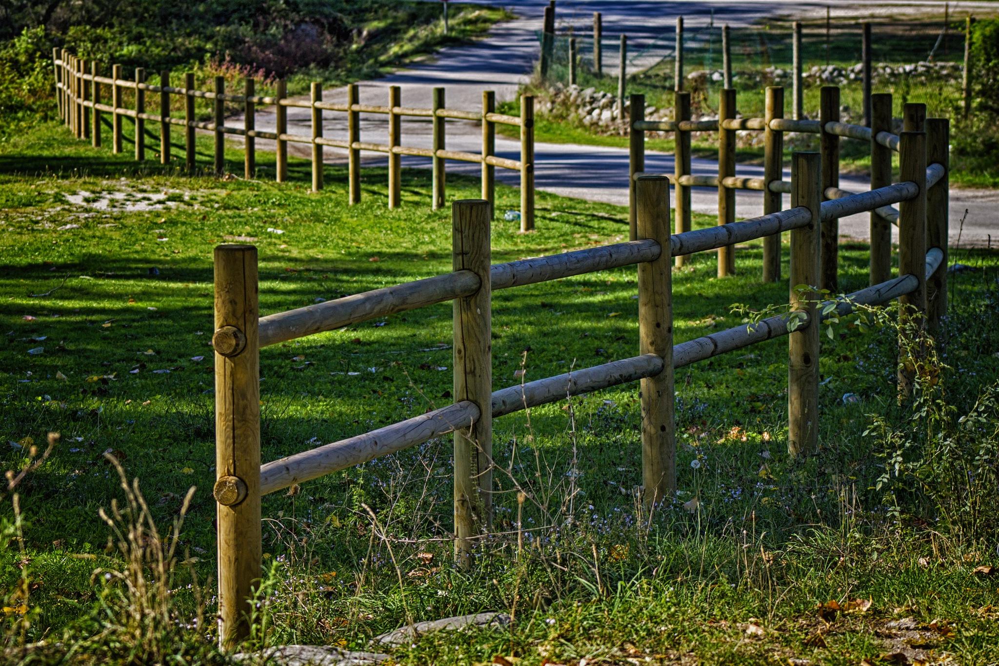 The farm by Salvatore Bertolino