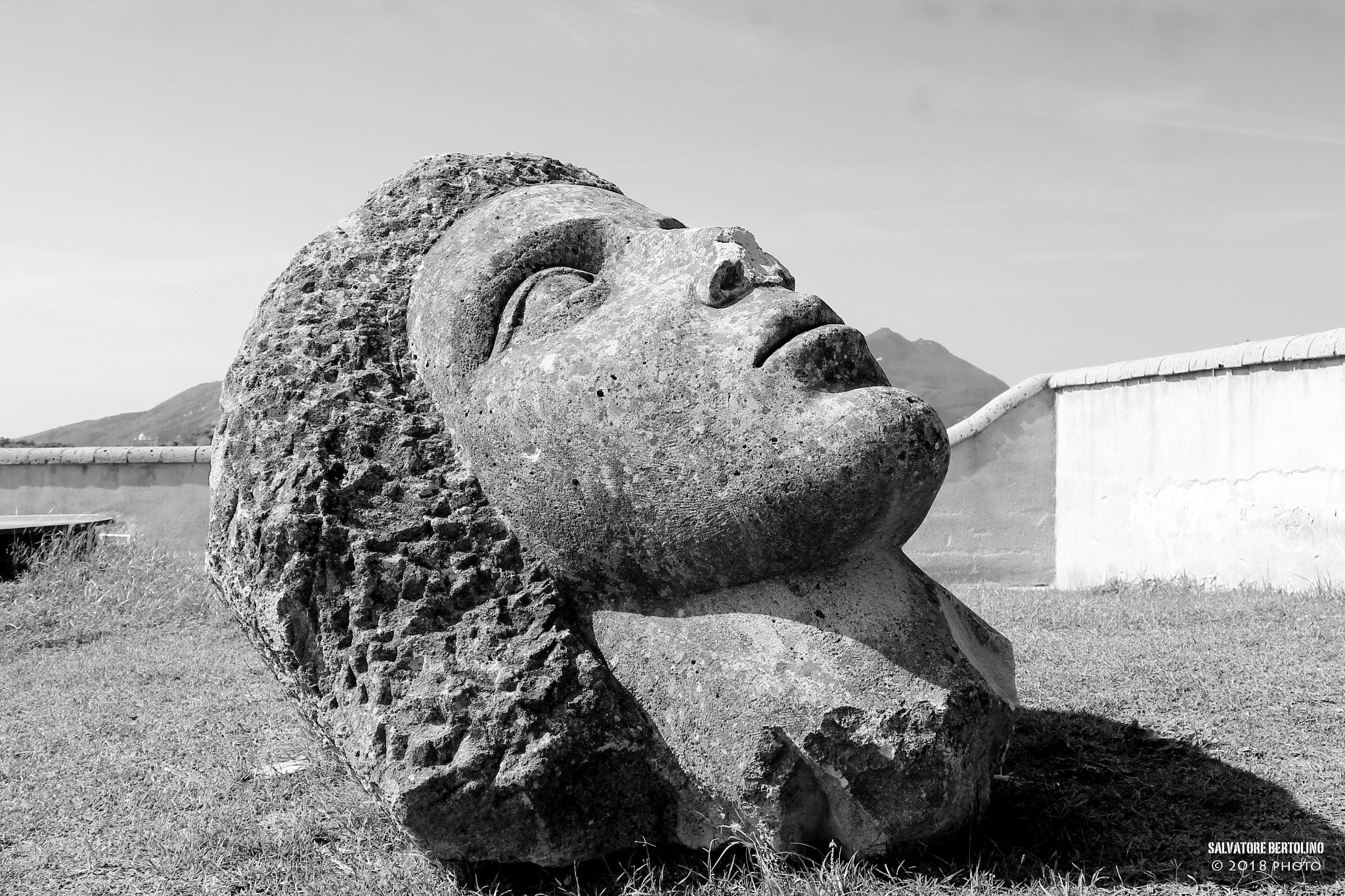 Omaggio a Graziella by Salvatore Bertolino
