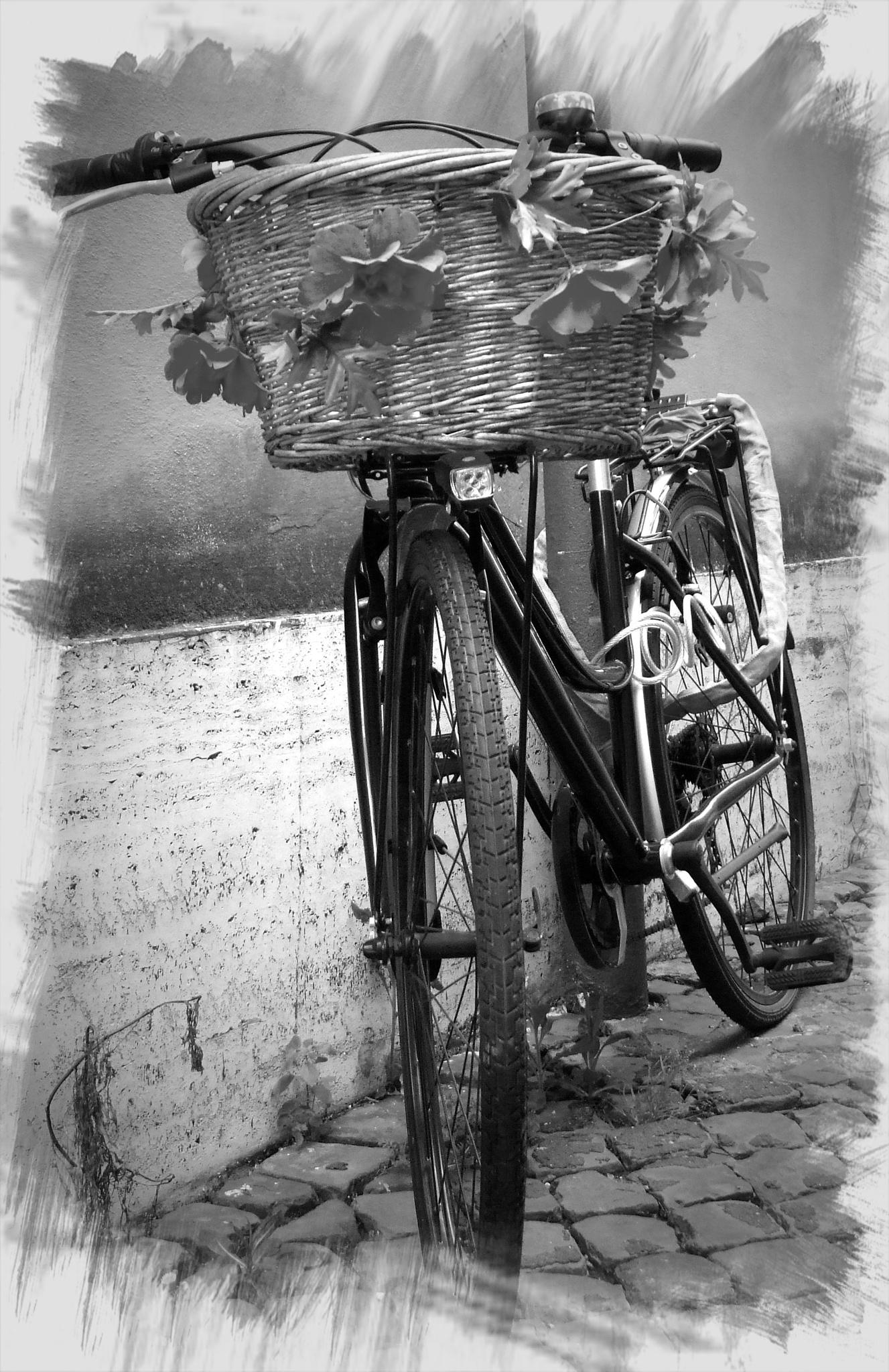 La bicicletta ... by Salvatore Bertolino