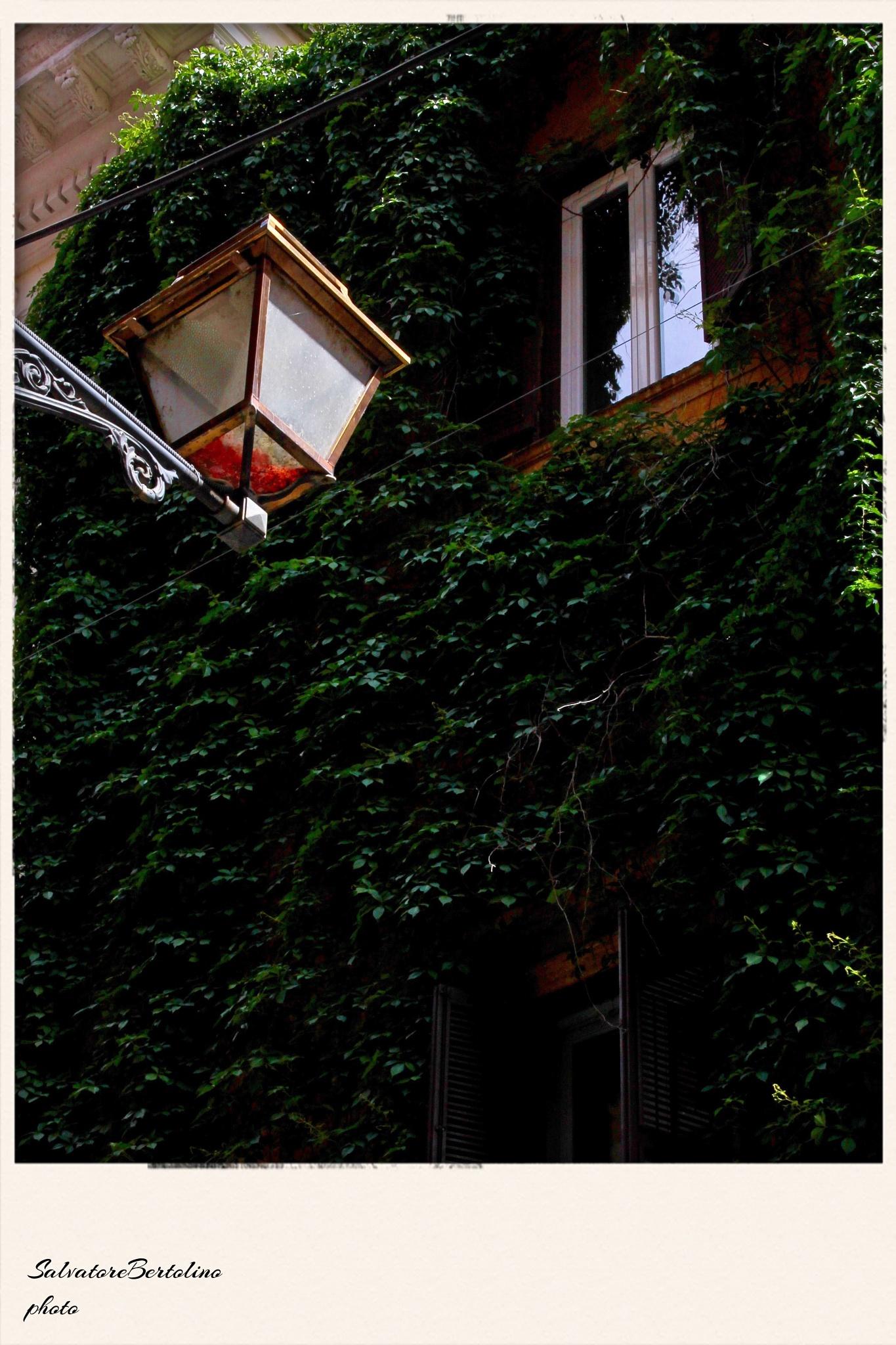 La finestra & la lanterna by Salvatore Bertolino