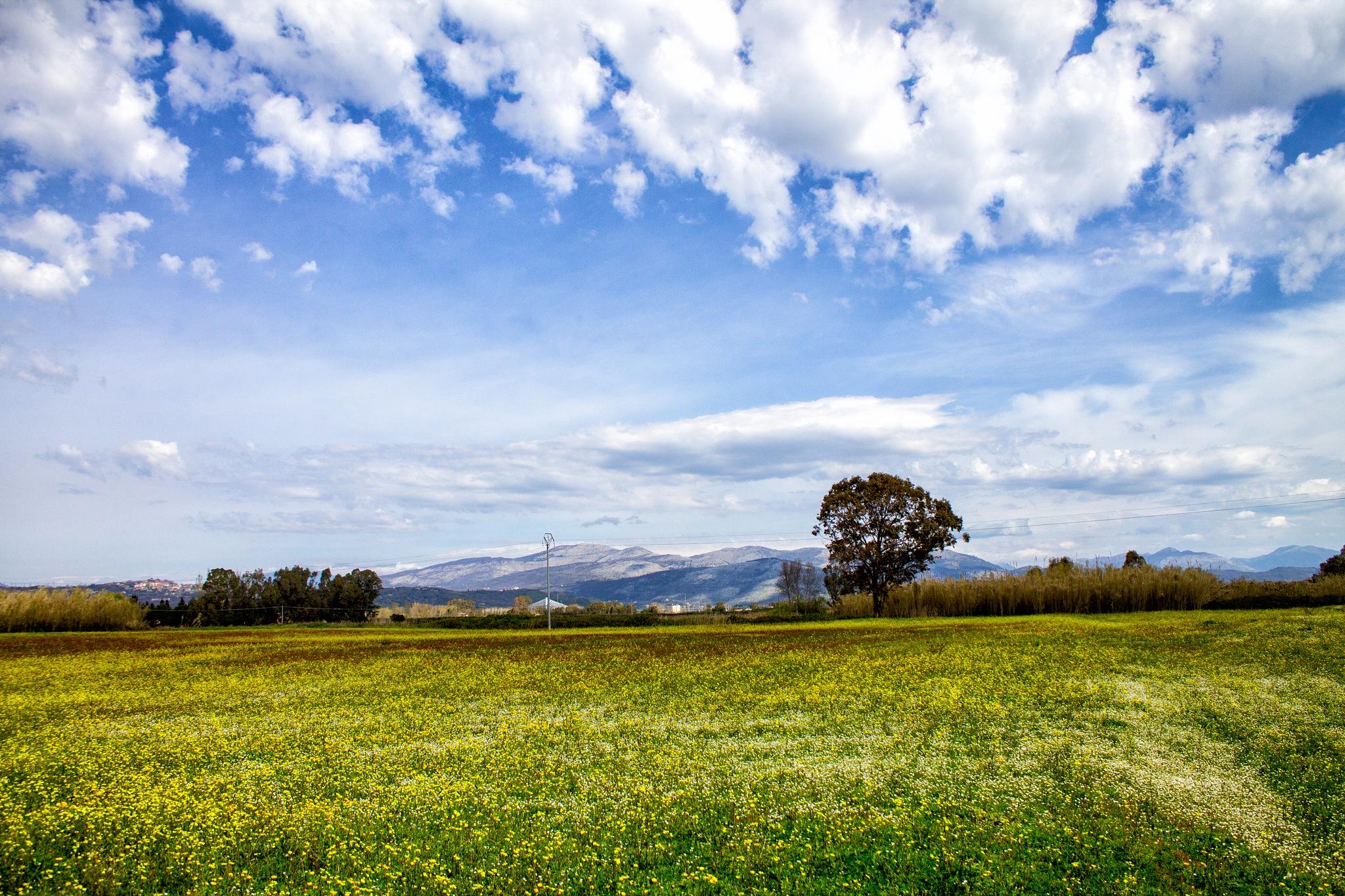 Parco regionale Roccamonfina - Foce del Garigliano by Salvatore Bertolino