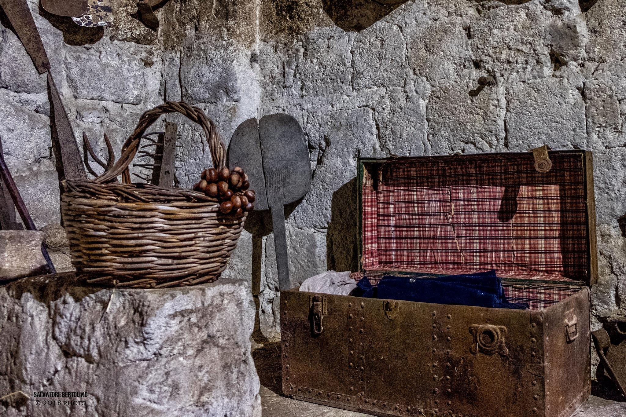 Mondo rurale by Salvatore Bertolino