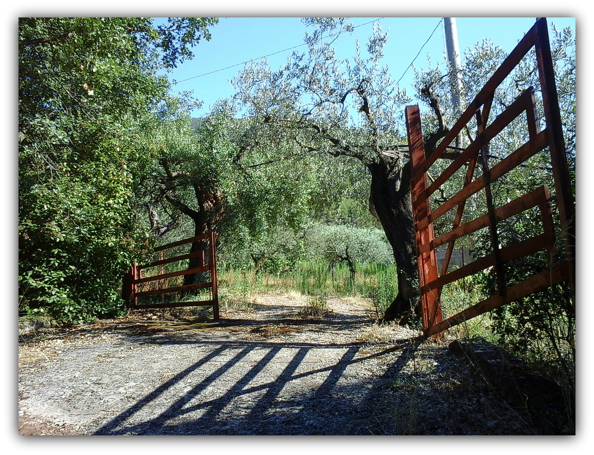 The gate by Salvatore Bertolino