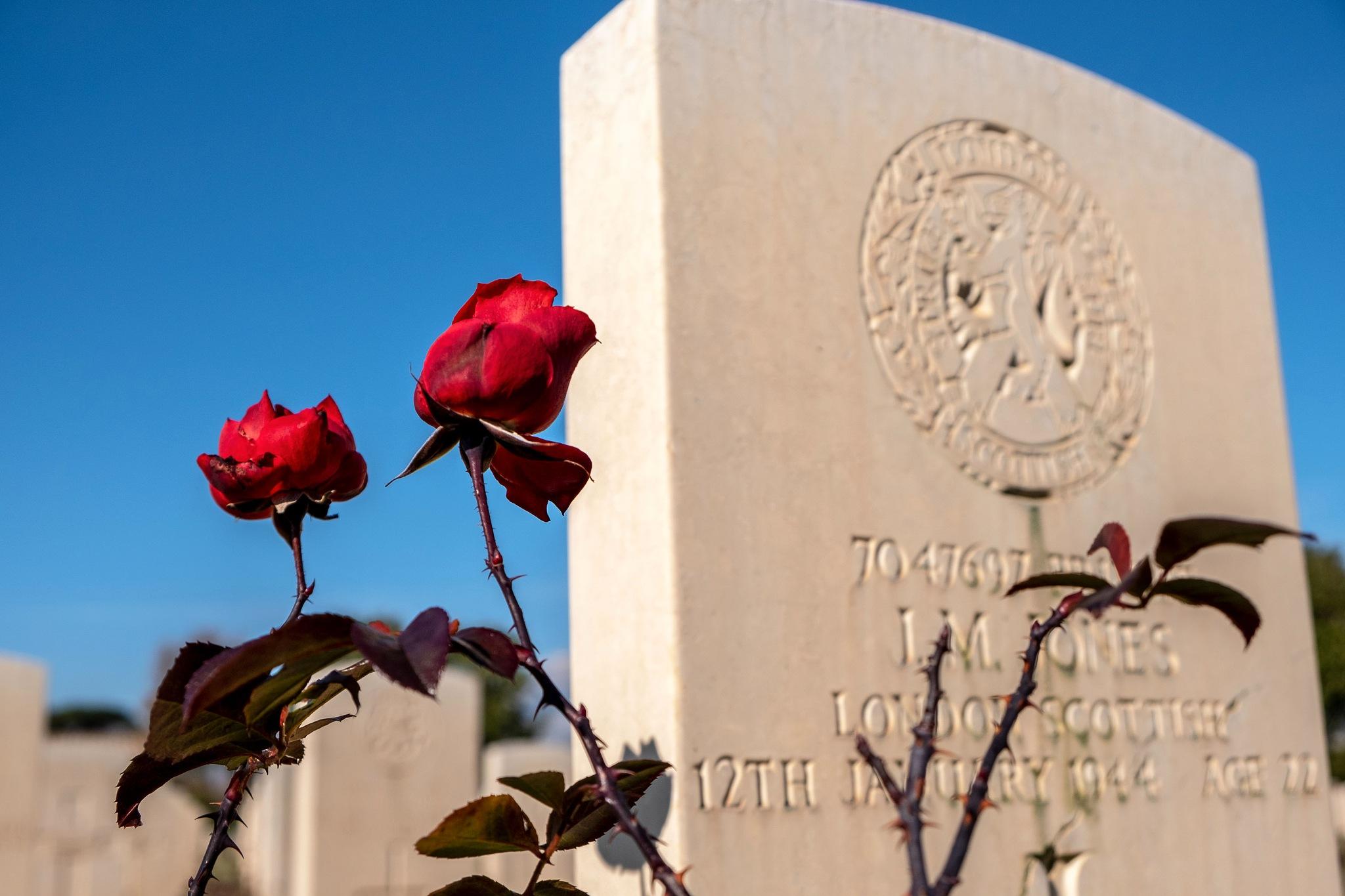 Minturno War Cemetery by Salvatore Bertolino