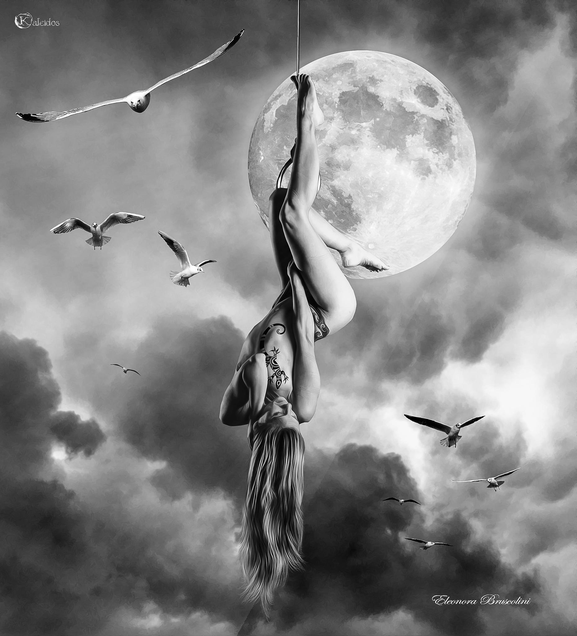 The flight..... by eleonora.bruscolini