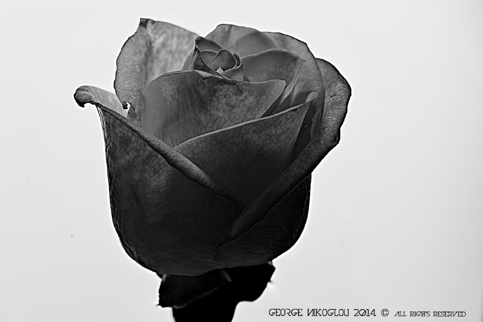 Untitled by giorgos nik