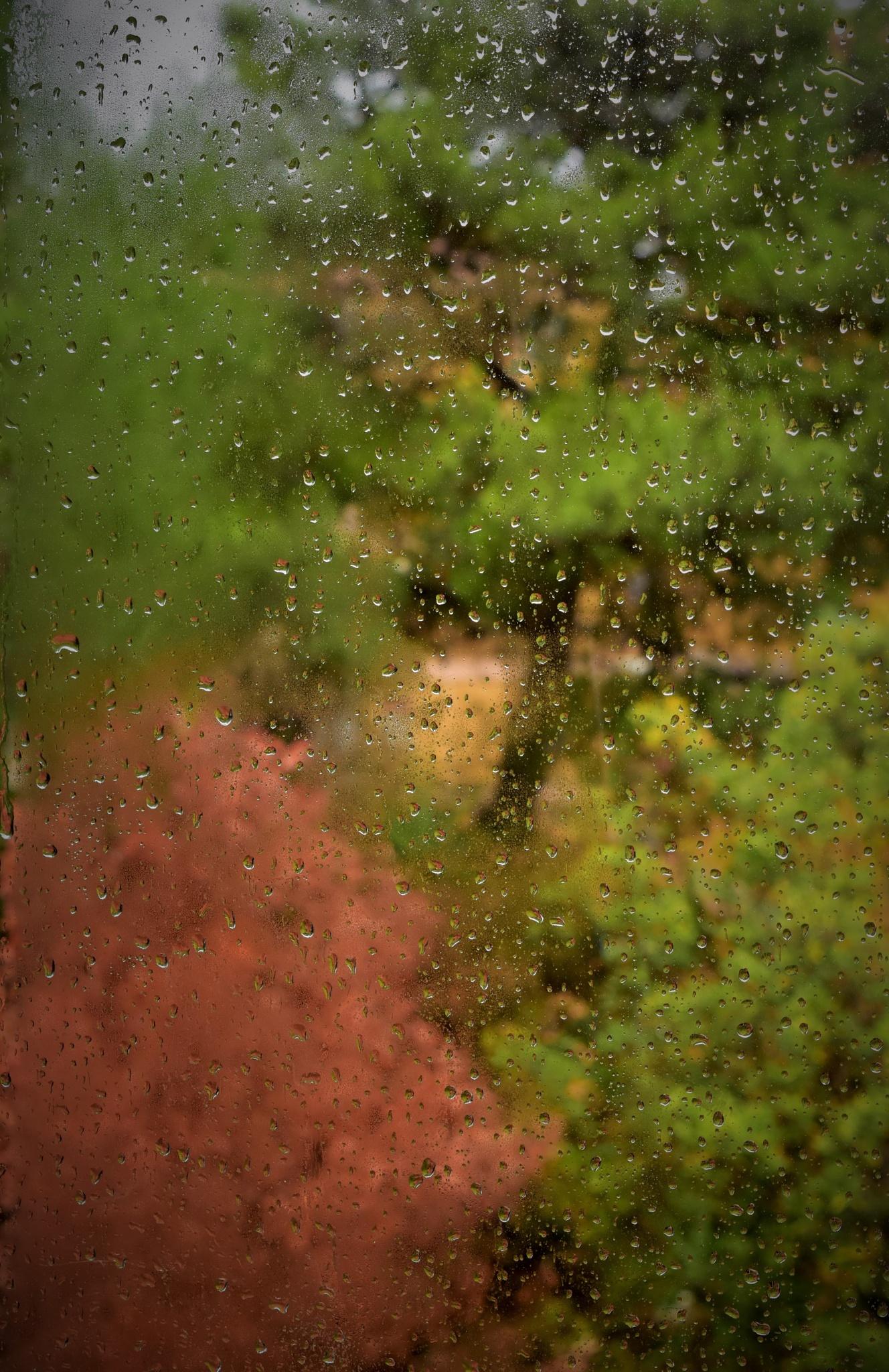lacrimed'autunno by ecauli1