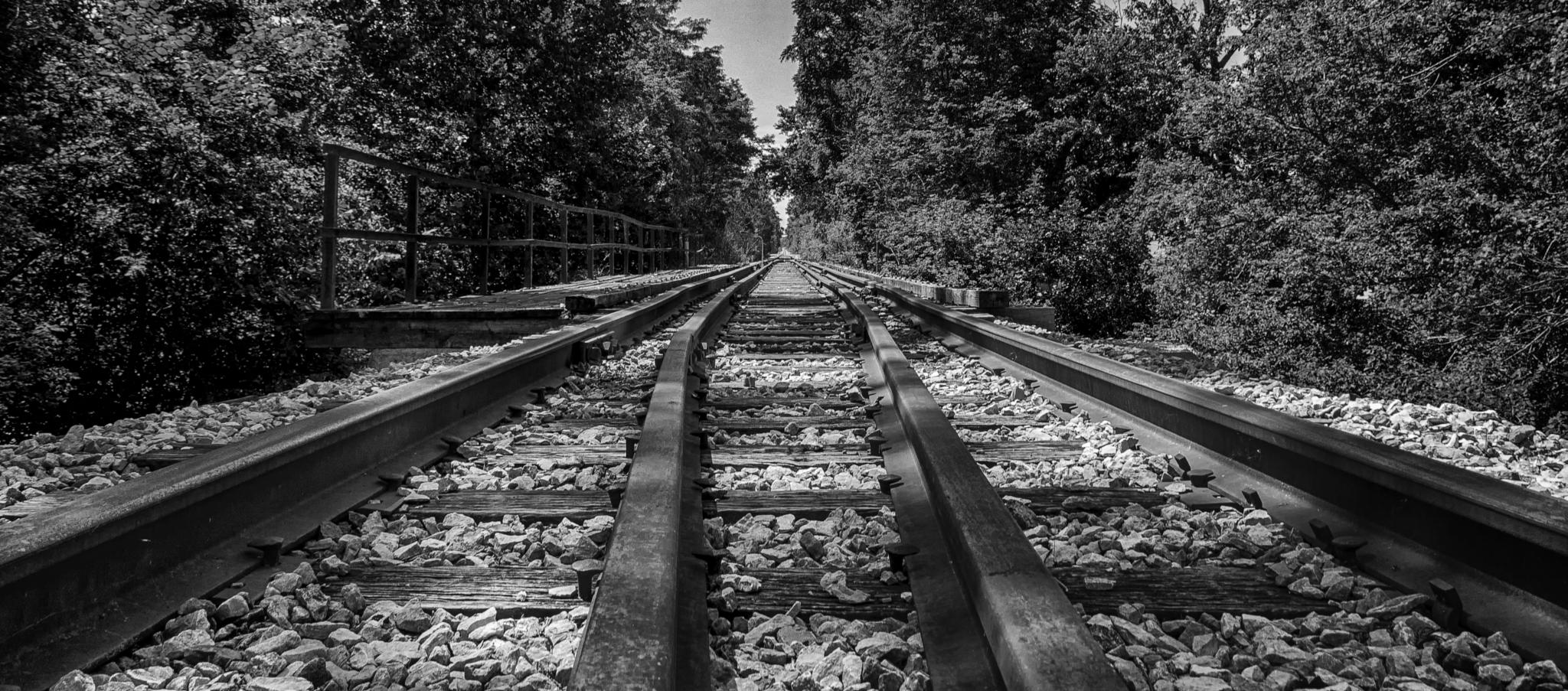 Down the rails by JohnBrake