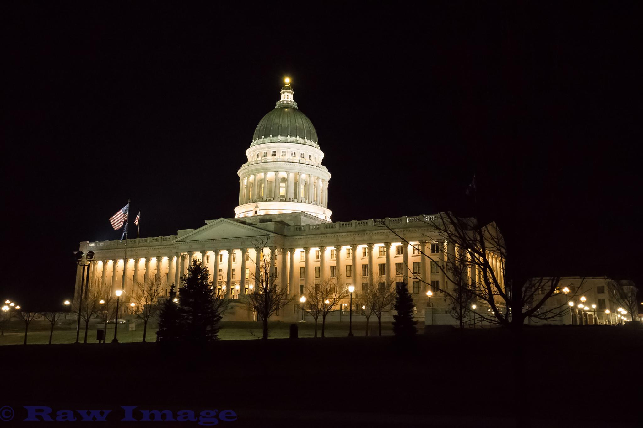 State Capital by Raw Image