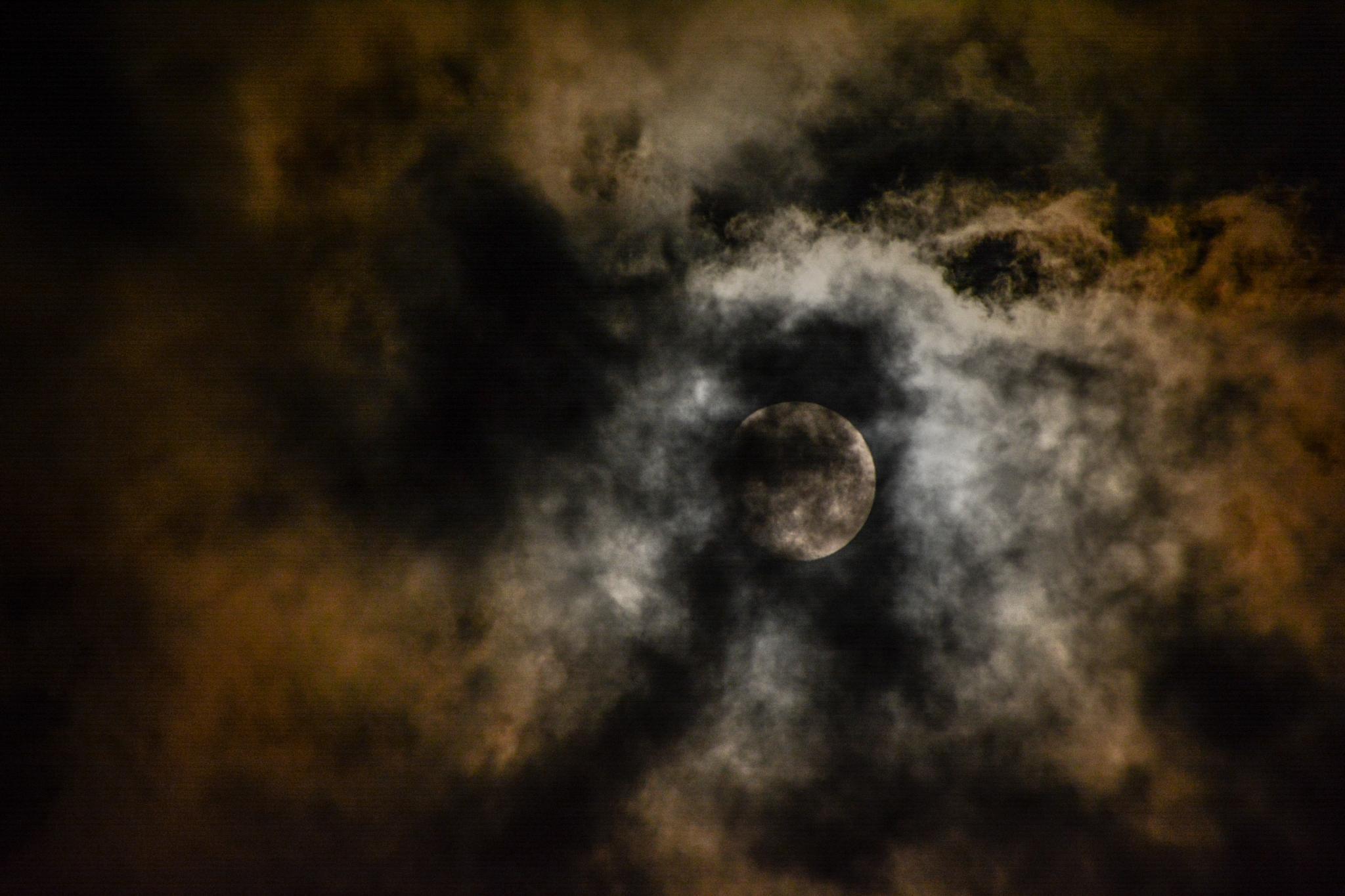 moonlight by nikonlux