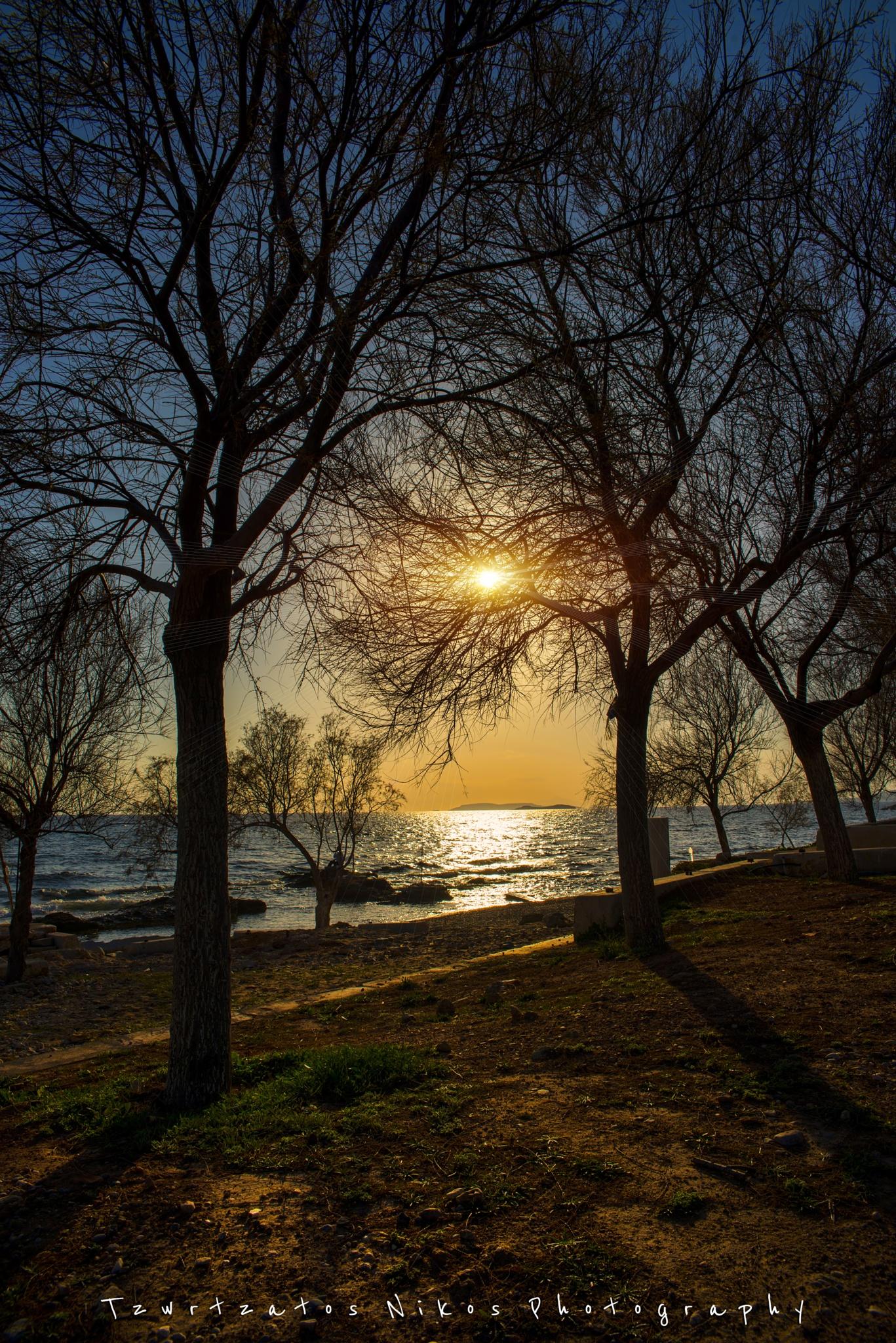 Sunset by NitZ Photography