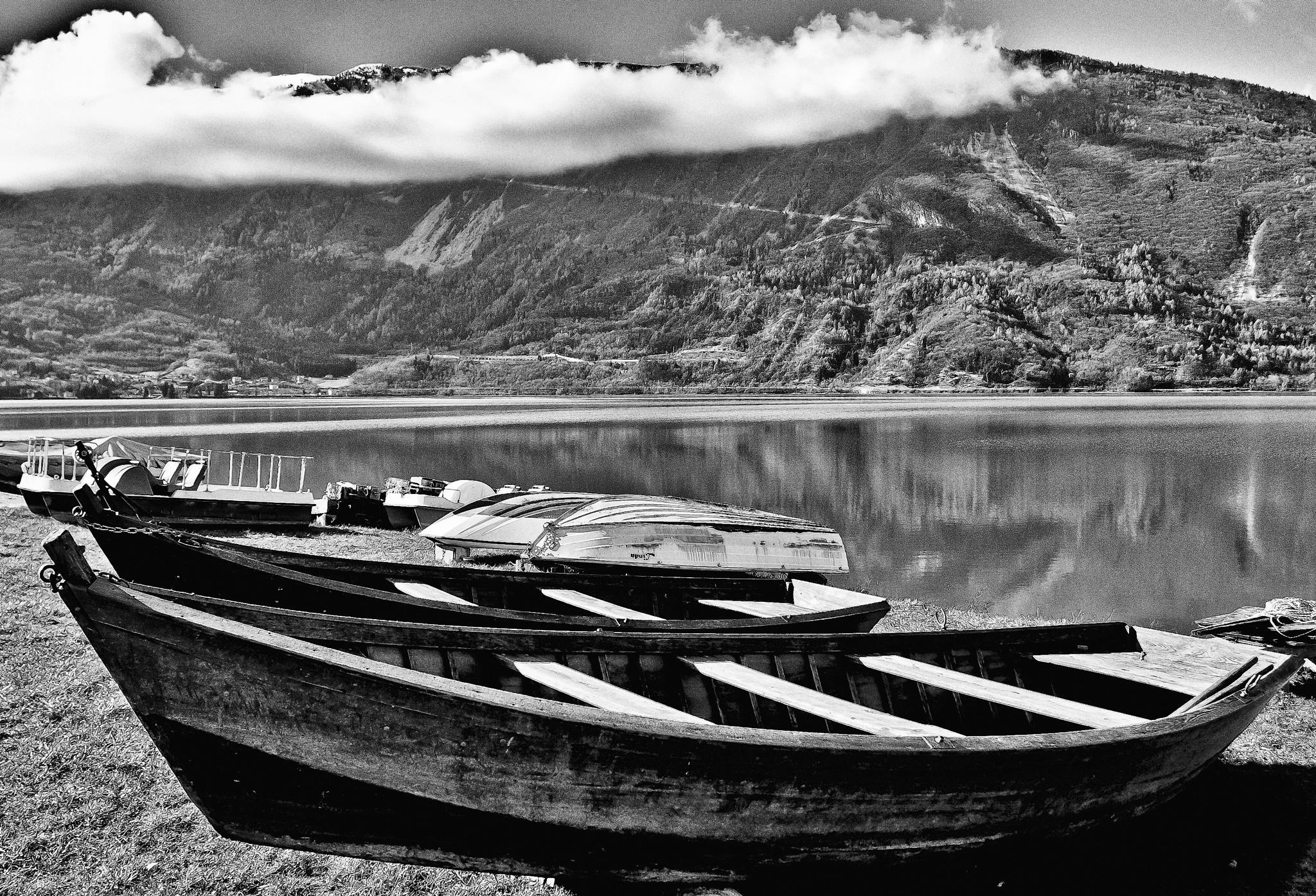 Lake by cosandy