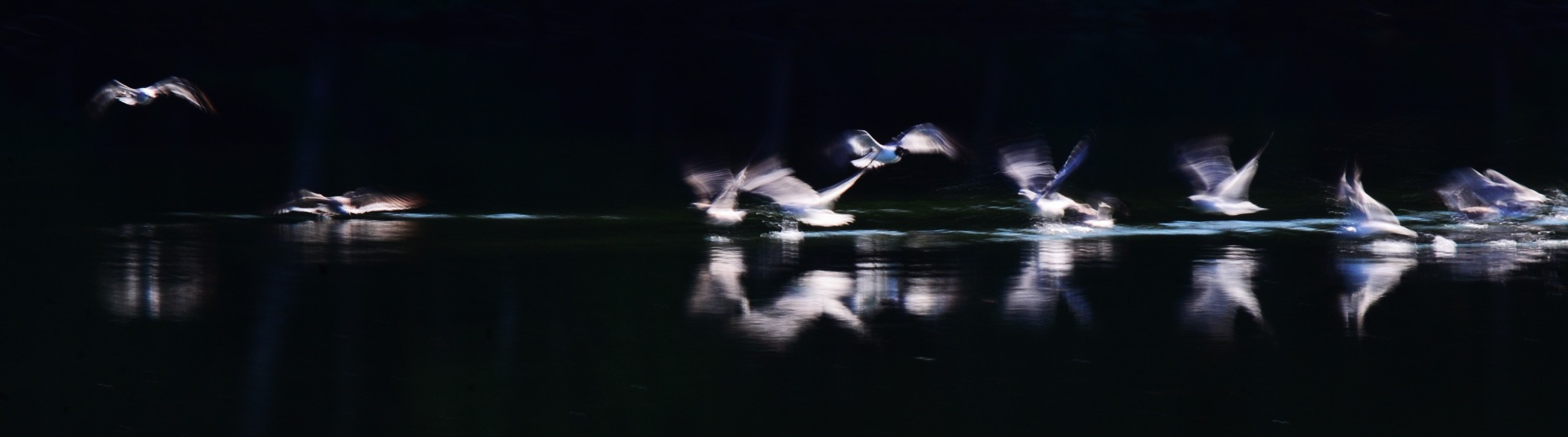 Untitled by dabbleshots