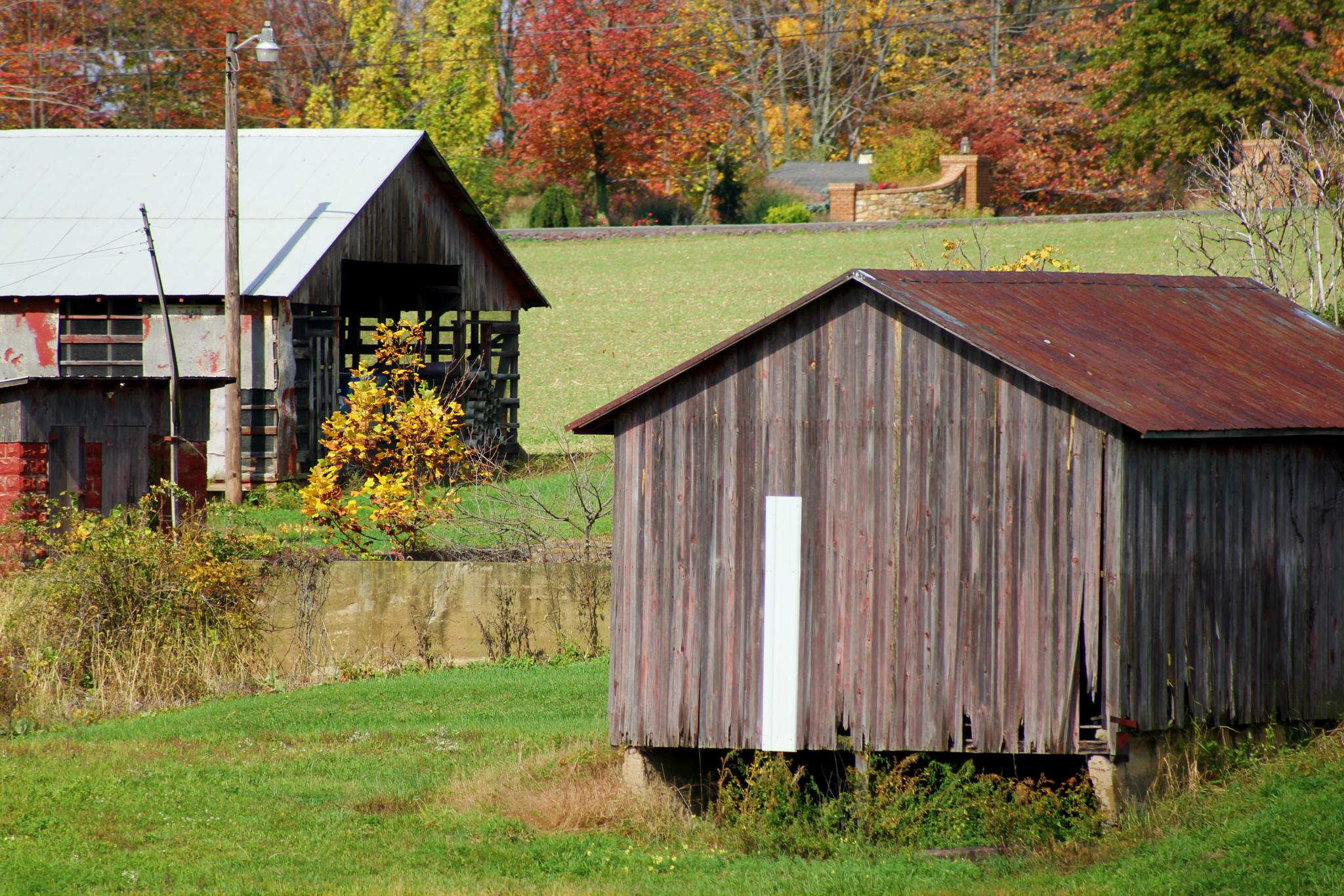 Behind the Barn by Looking Through the Lens Photography