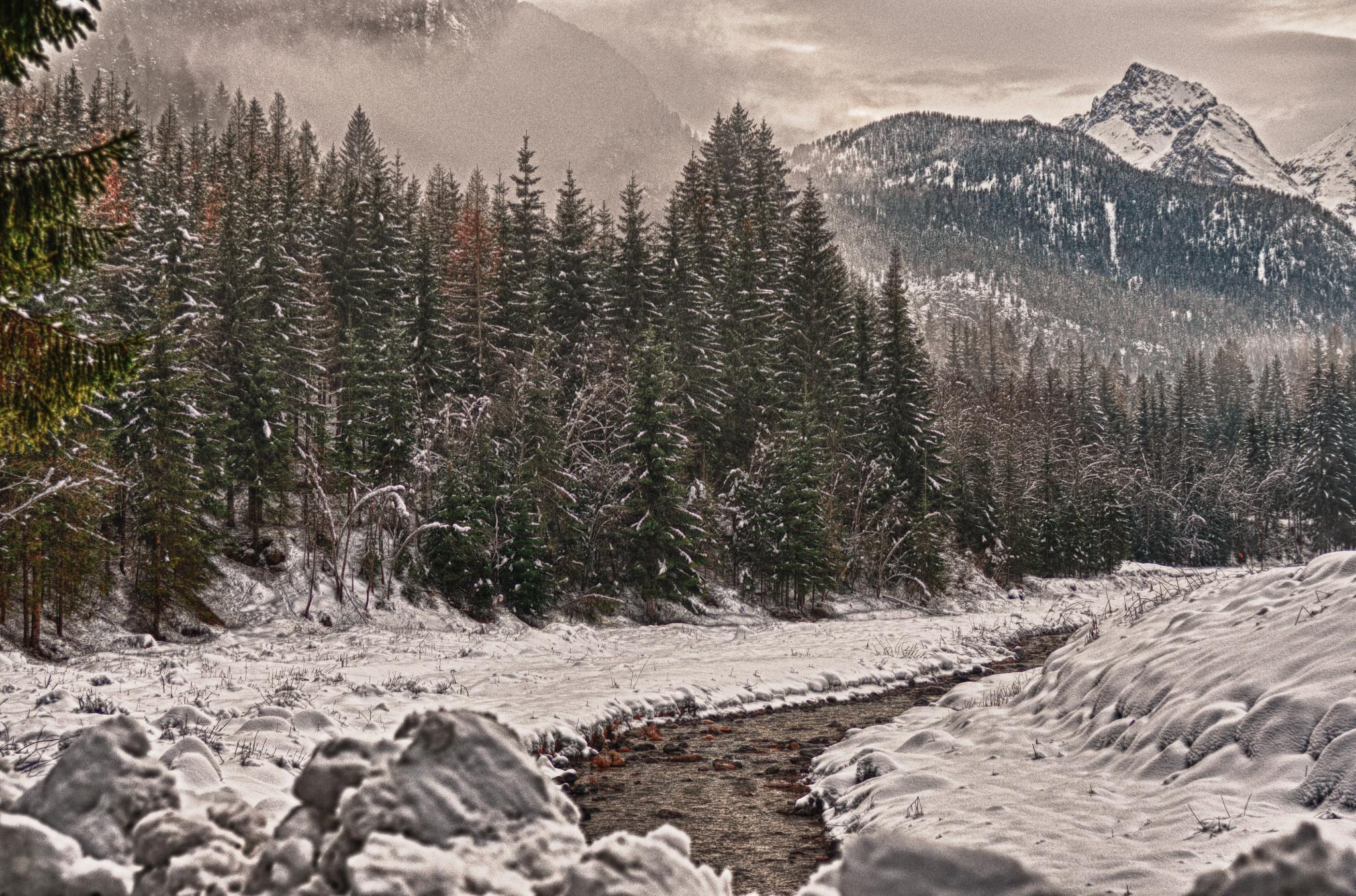 Pettorina river n. 2 - winter vision by andragoli