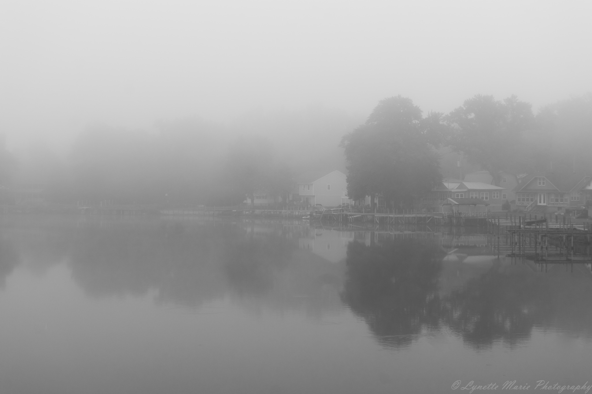 Fog by Lynette M. Feliciano-Justice