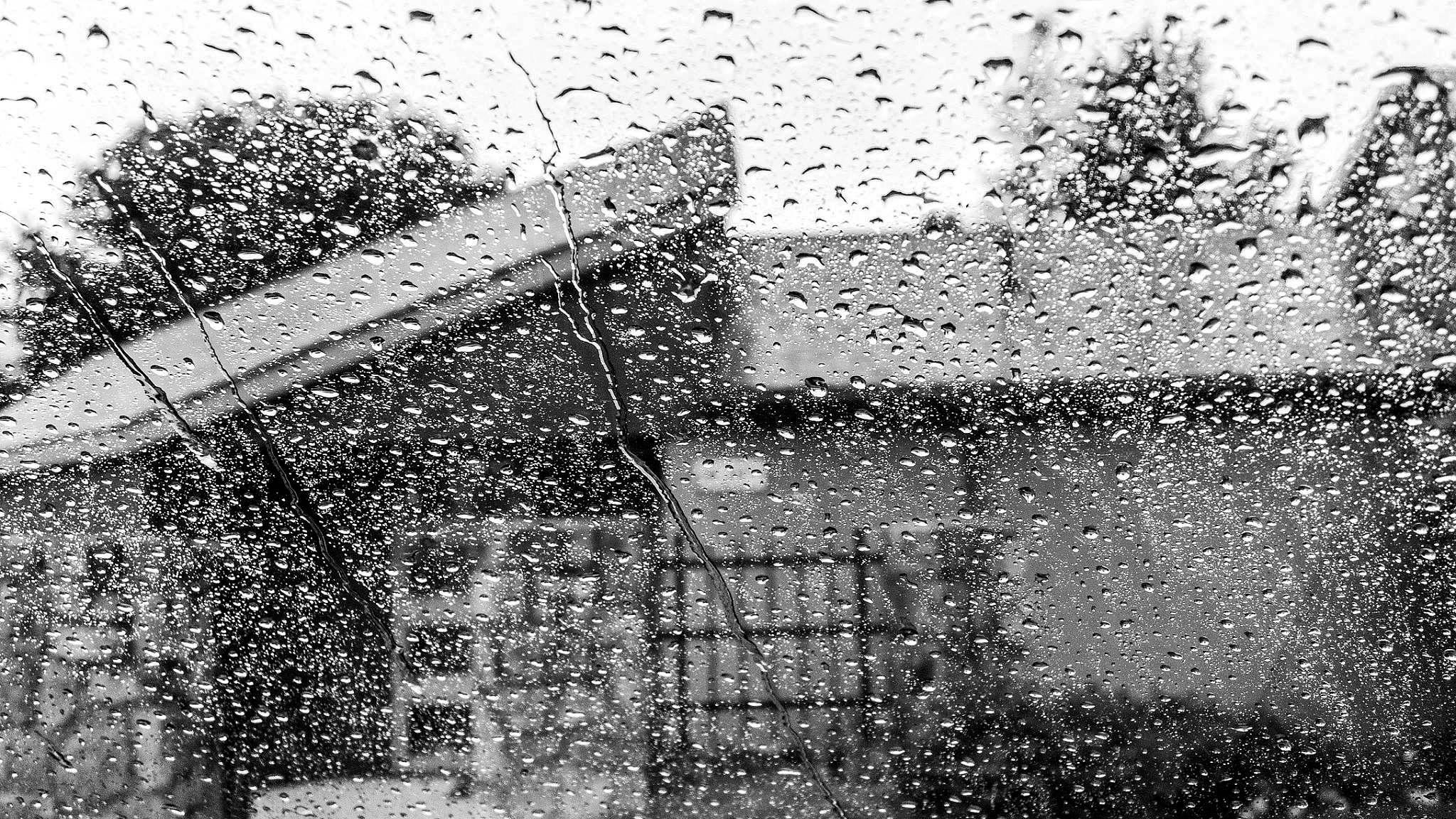 Rain Came by Lynette M. Feliciano-Justice