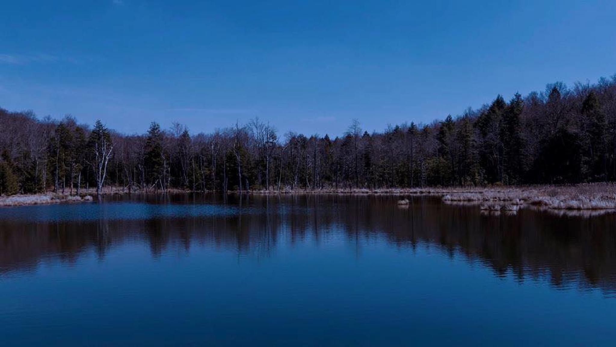 The Lake, Part II by Lynette M. Feliciano-Justice