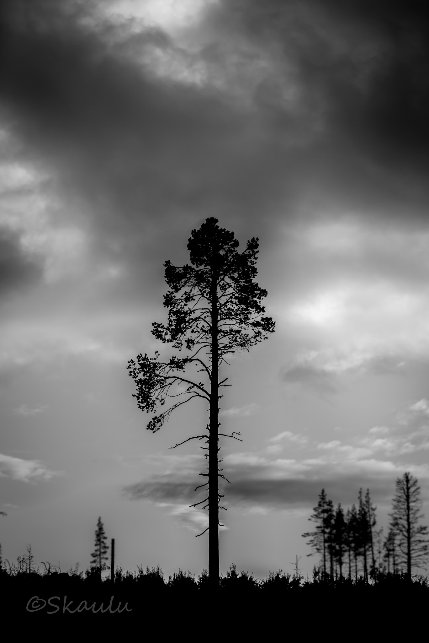 Untitled by Ante Skaulu @skaulu_photo