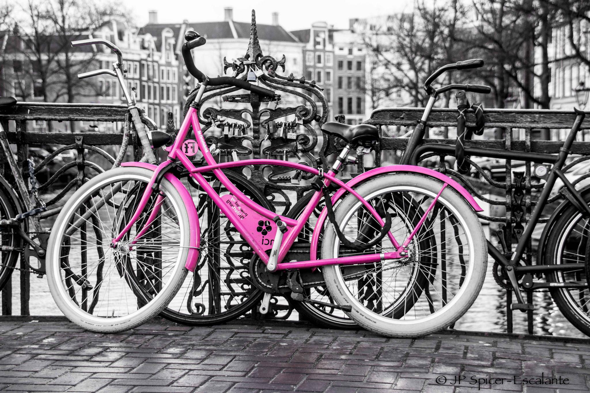 The Pink Bike by jp.spicer