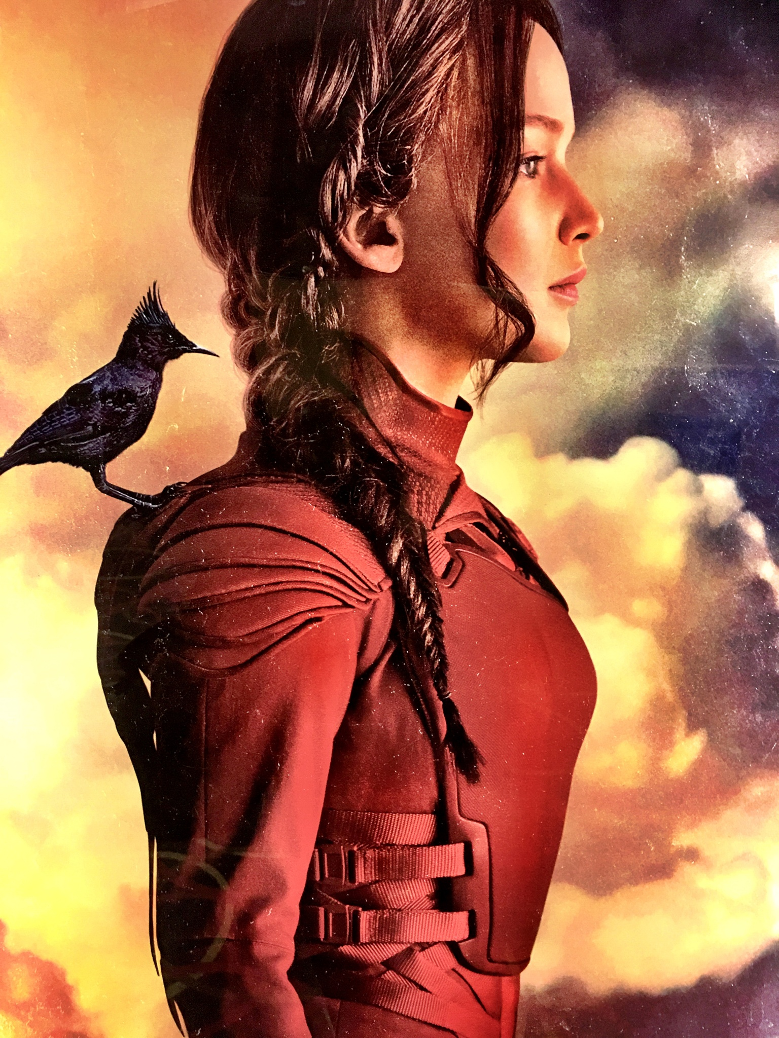 The Mockingjay pt. 2 by Patryce Haltiwanger Phillips