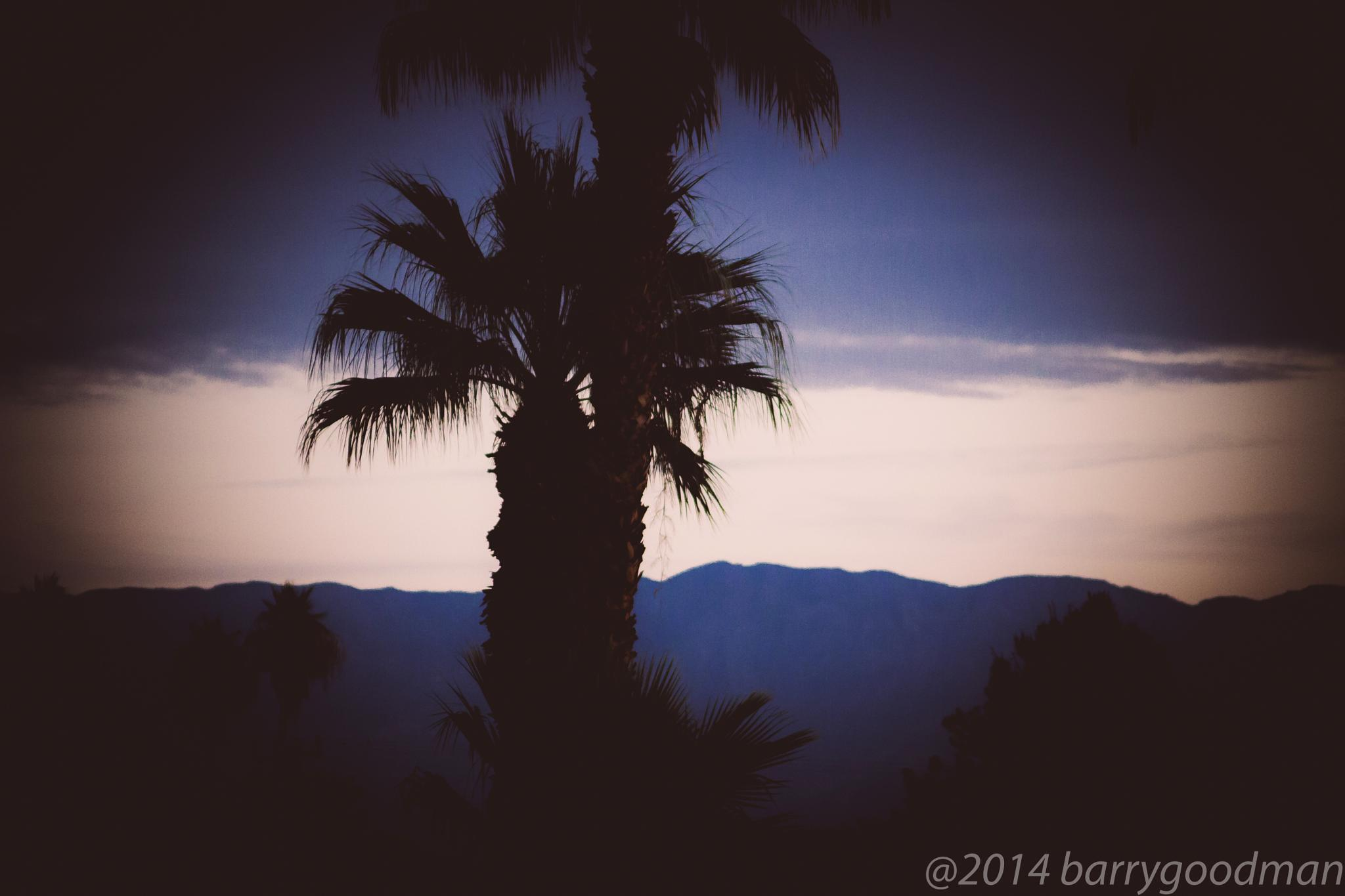 Blue days in Palm Springs, CA by bharrison.goodman