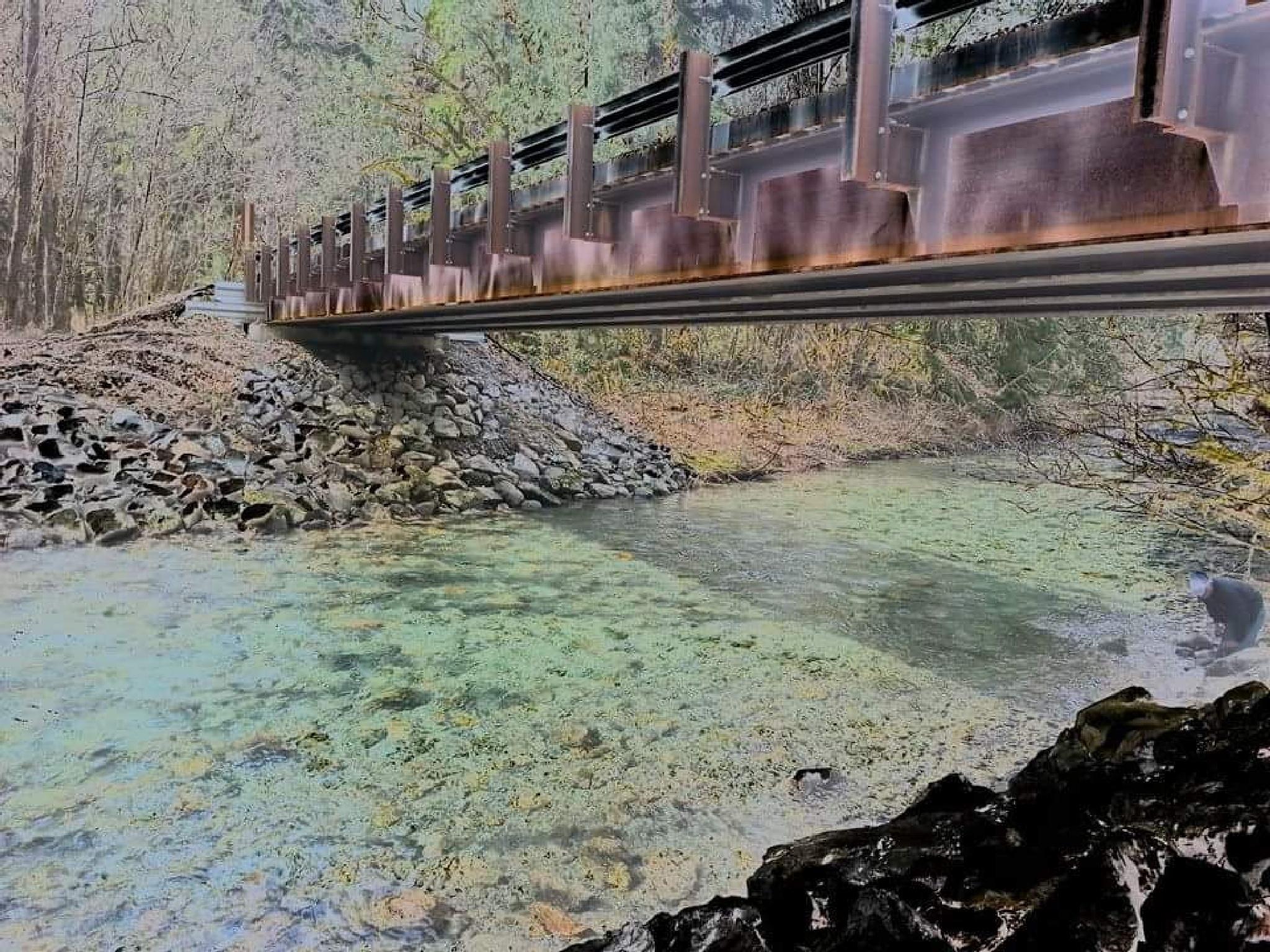 train bridge 2 by dawn.brown.7927