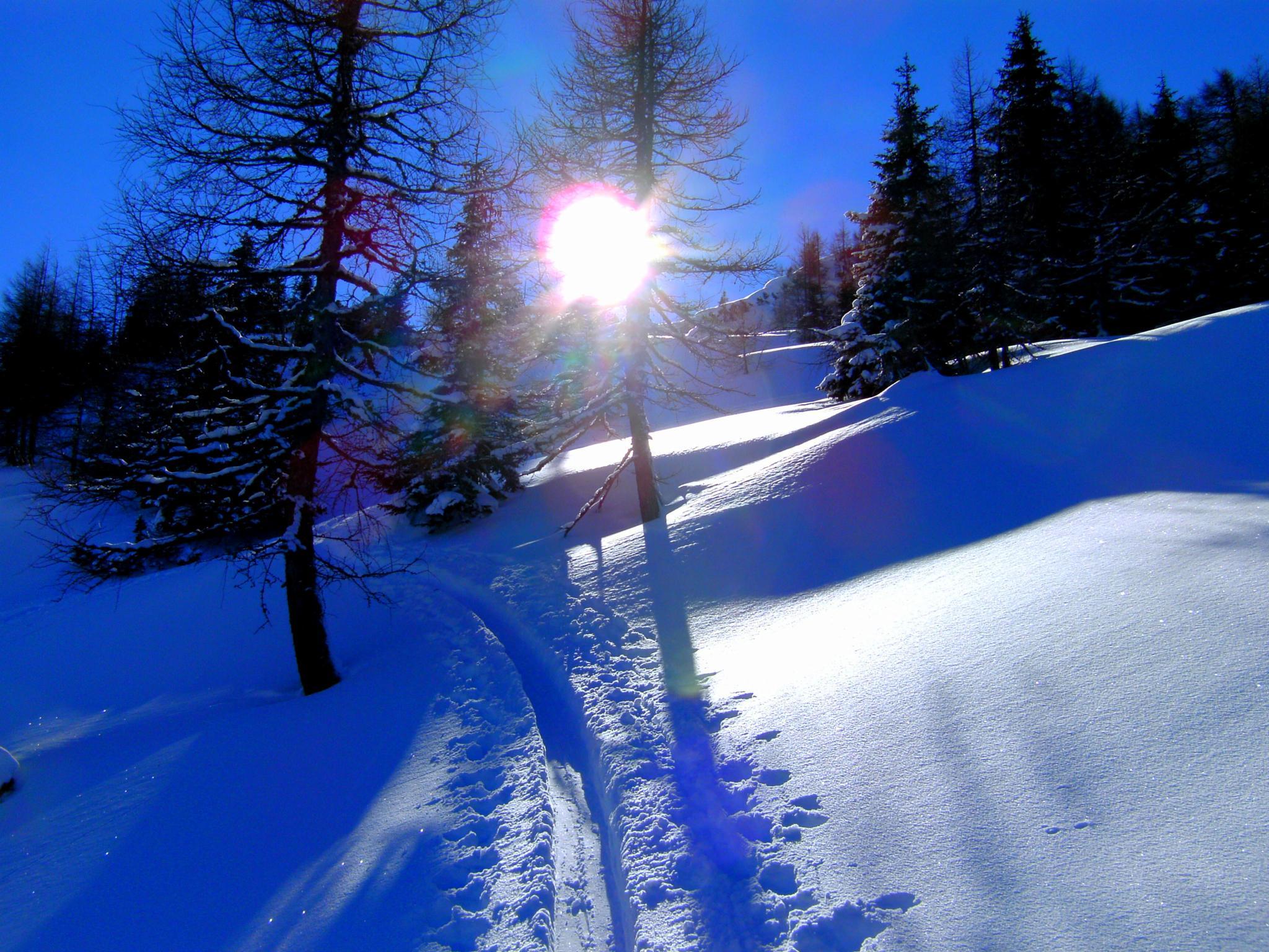 winter in austria by Sandra Lichtkoppler