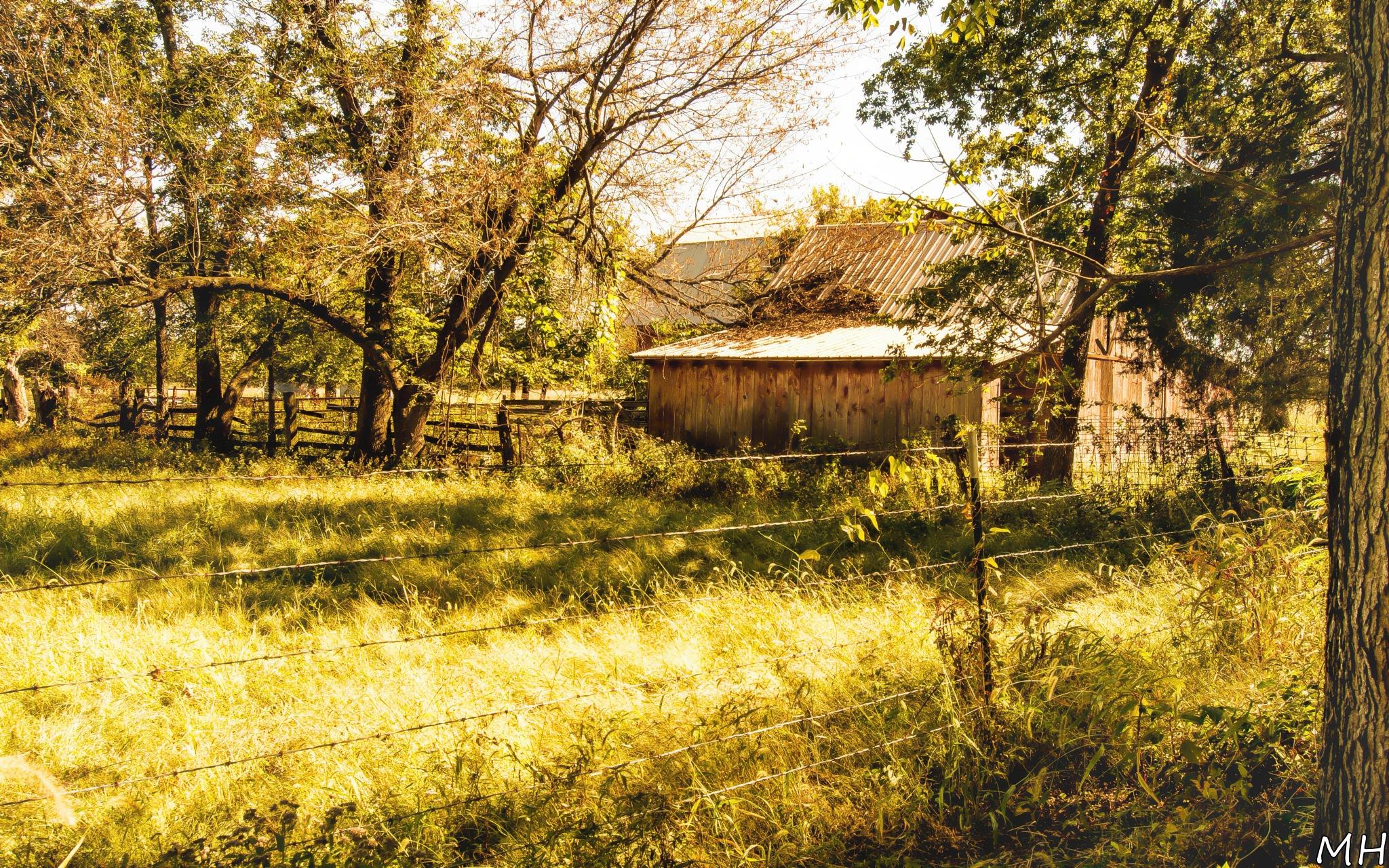 Farm by MH