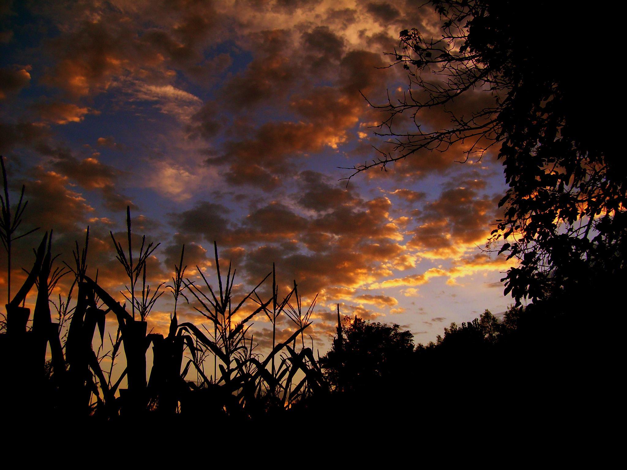 Sunset... by goran.kulezic
