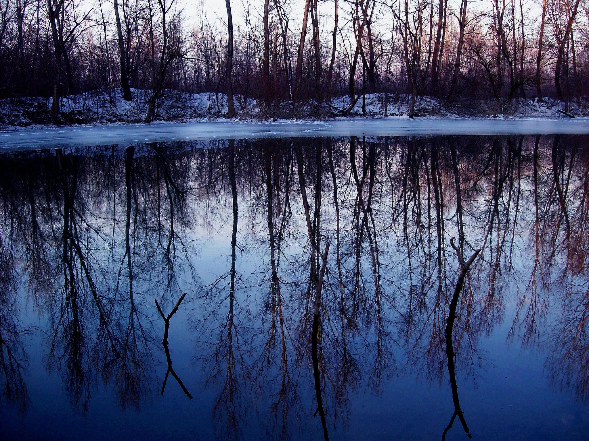 Reflection by goran.kulezic