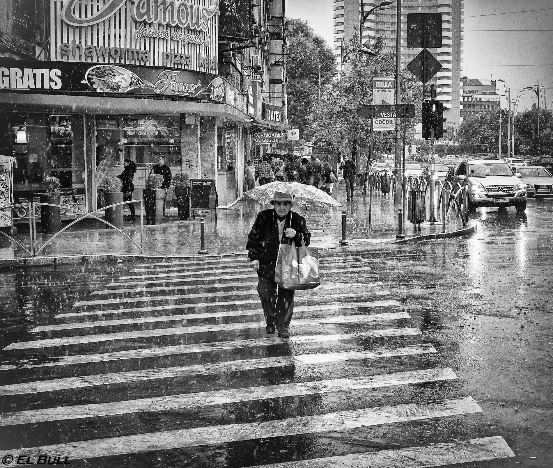 Rain  by El Bull
