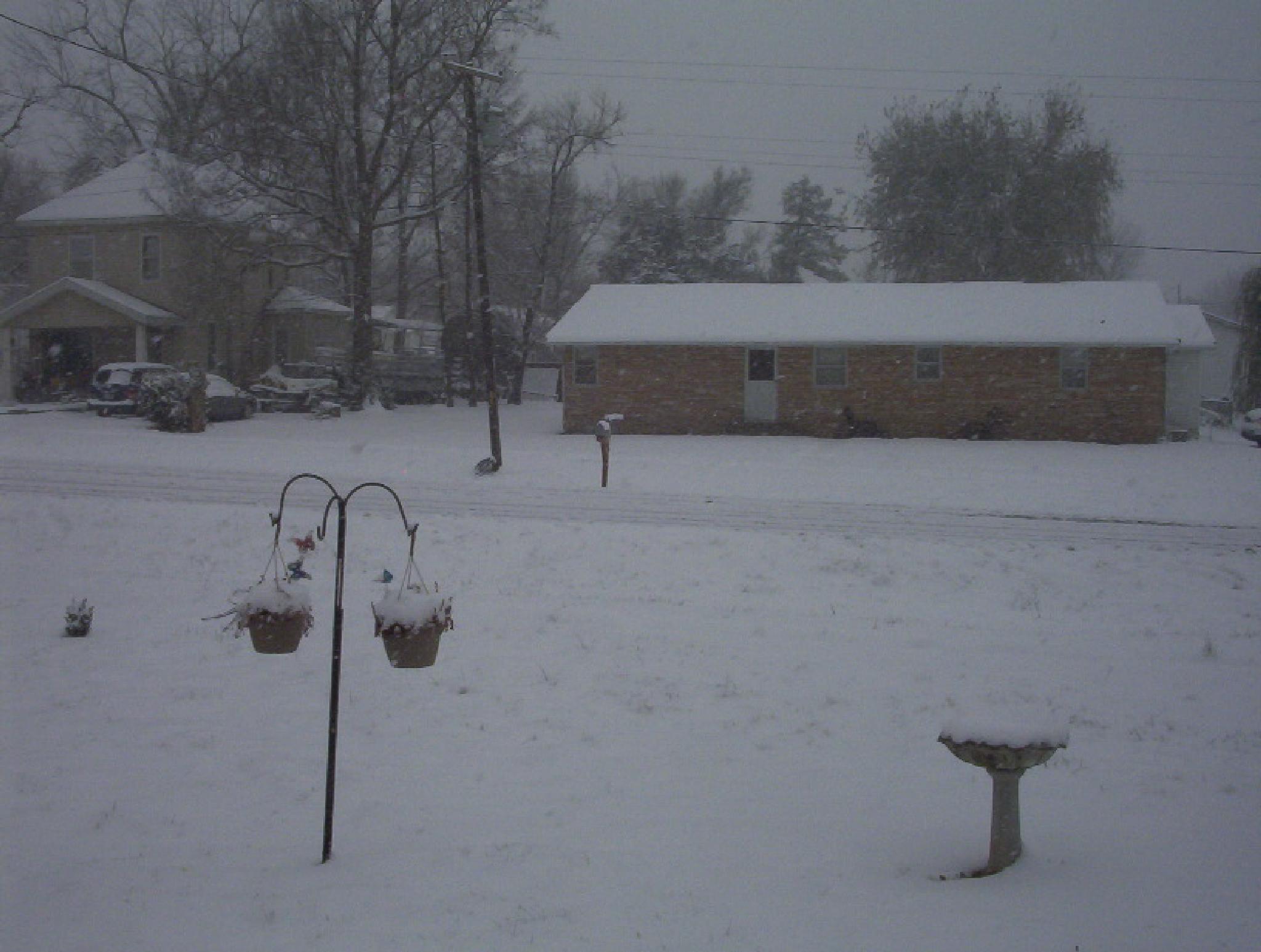 SPRING SNOW by peggy.klimadunkinbenning